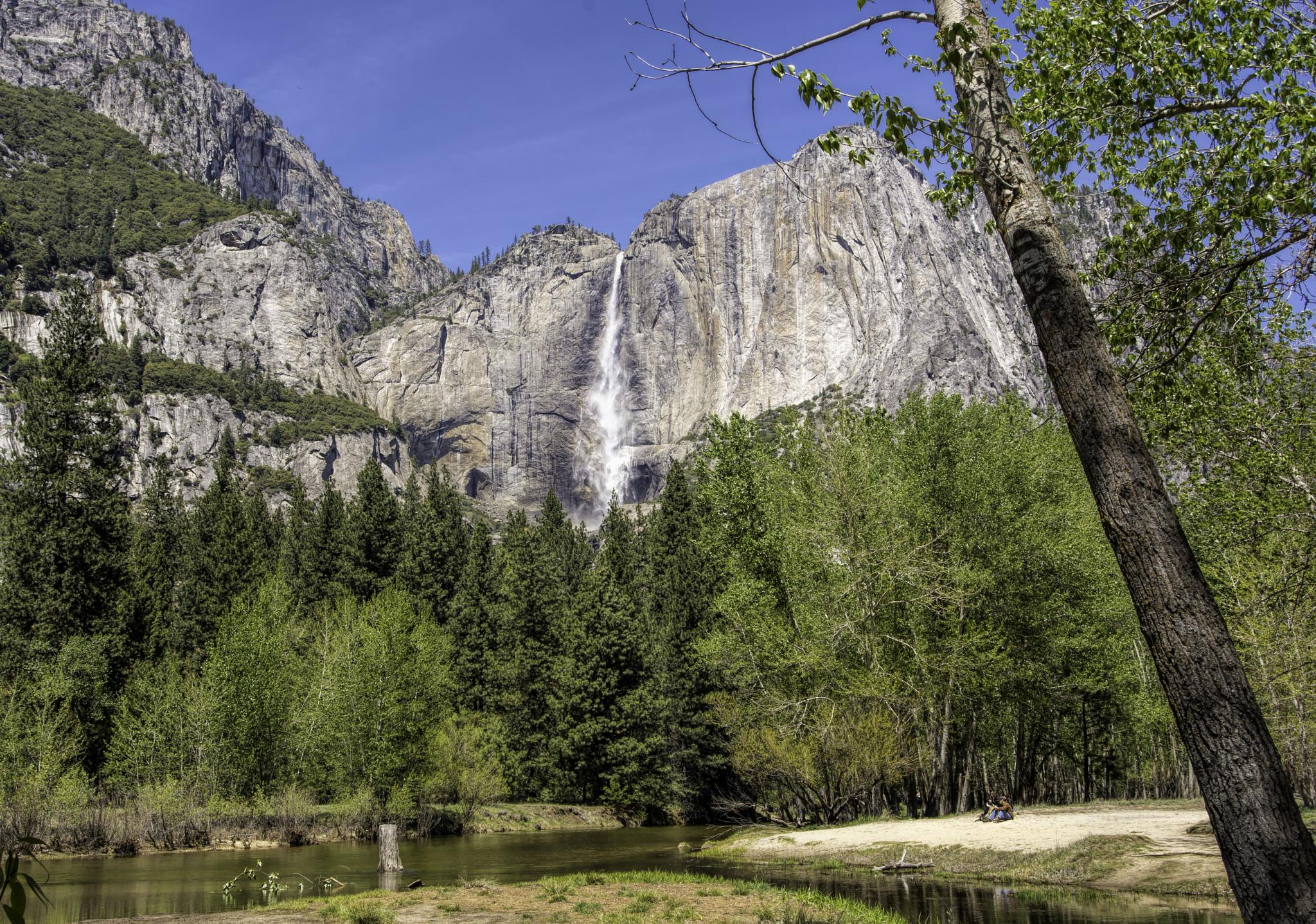 Photo in Nature #yosemite #yosemite valley #yosemite national park #california #landscape #river #merced river #yosemite falls #sierras #valley #nikon d7100