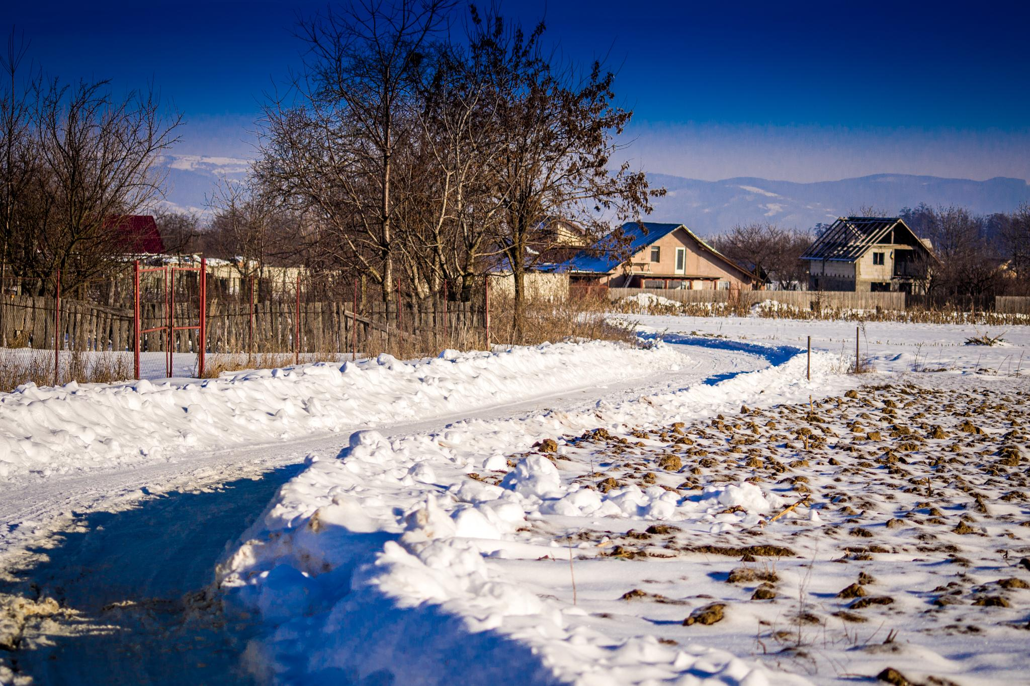 country side by isofrone