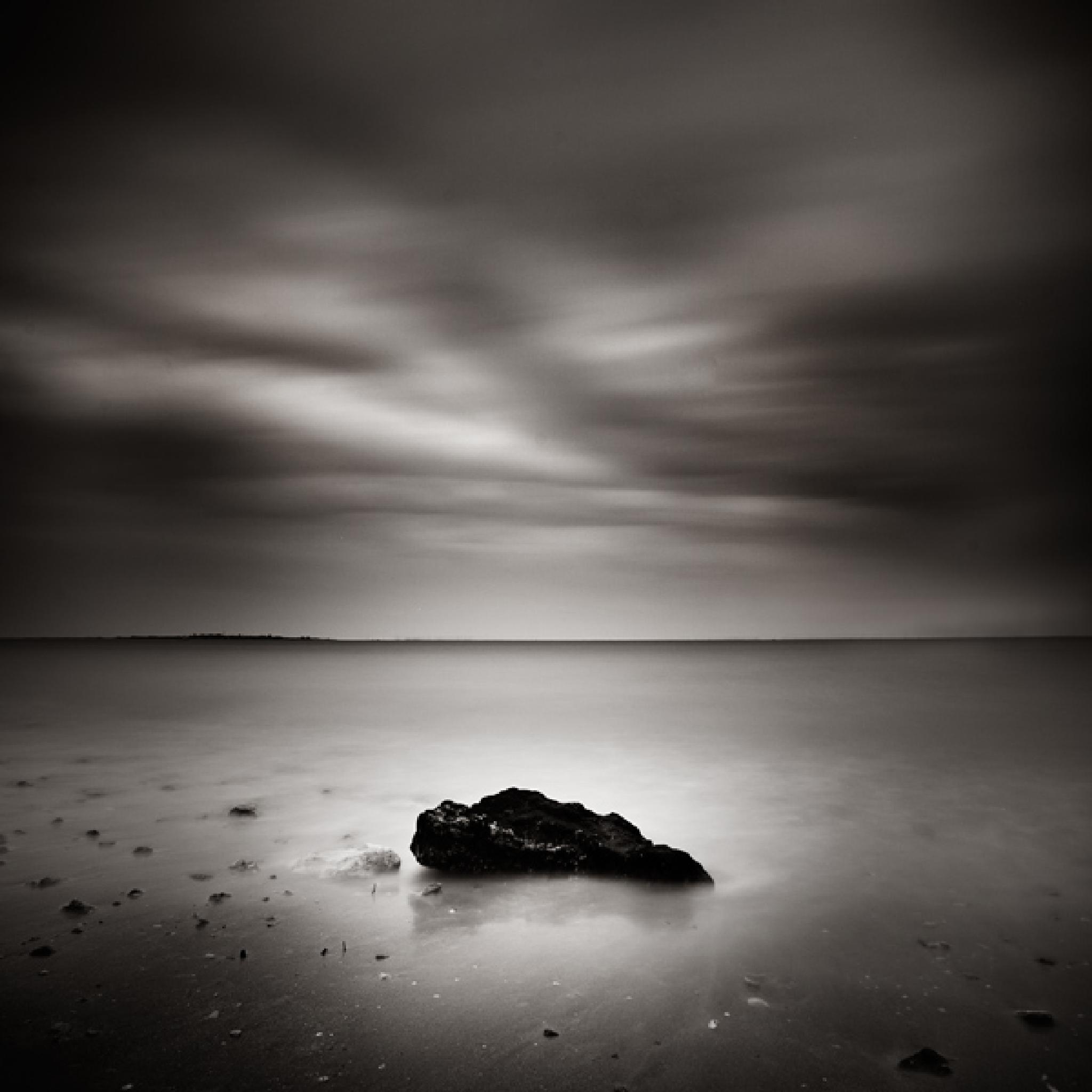 Simplicity by Xavier Rey