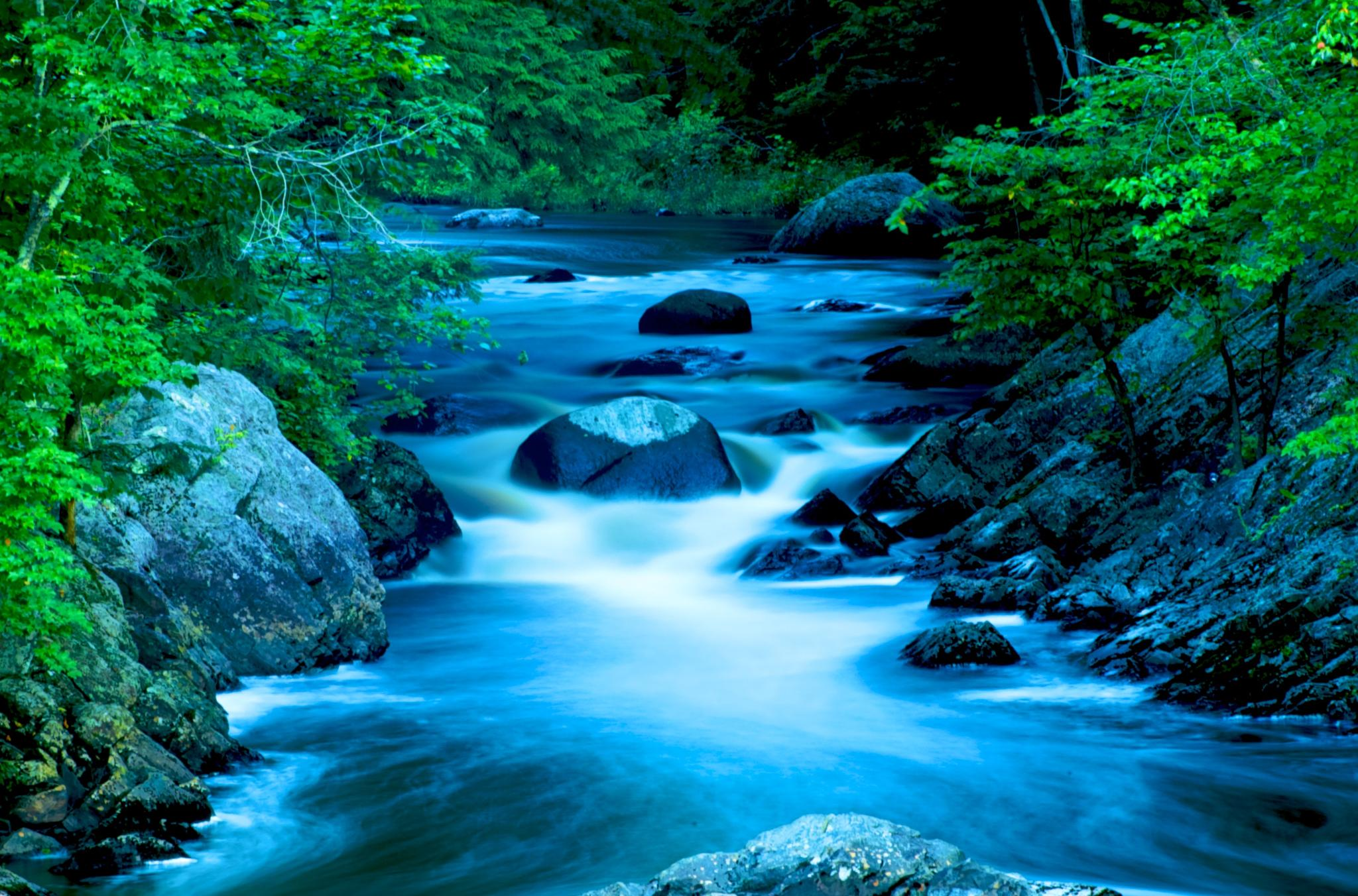 Cool morning stream by Wayne V. Hall (WALL Photography and Design)