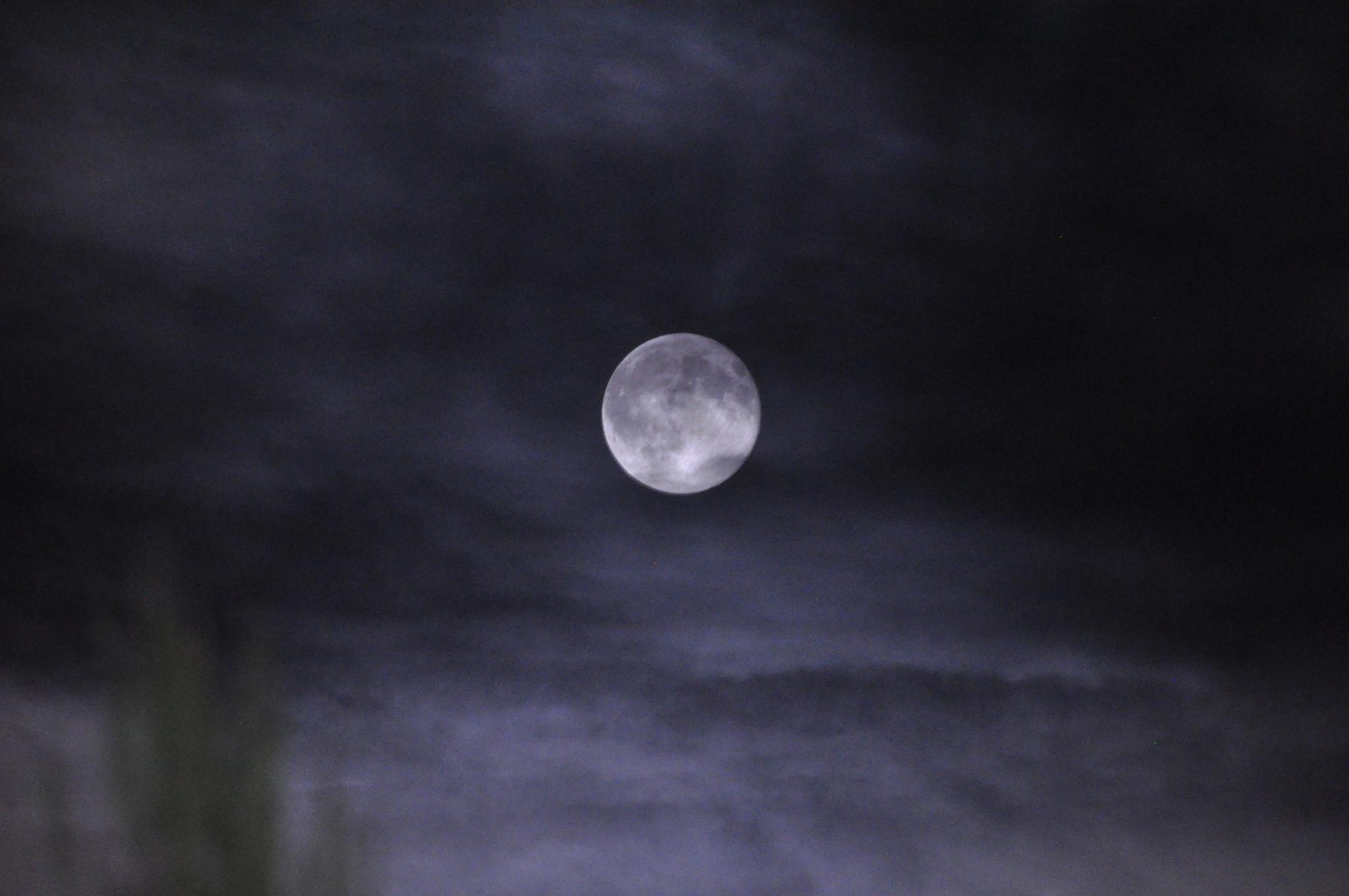 Luna piena by matteo.valentini.522