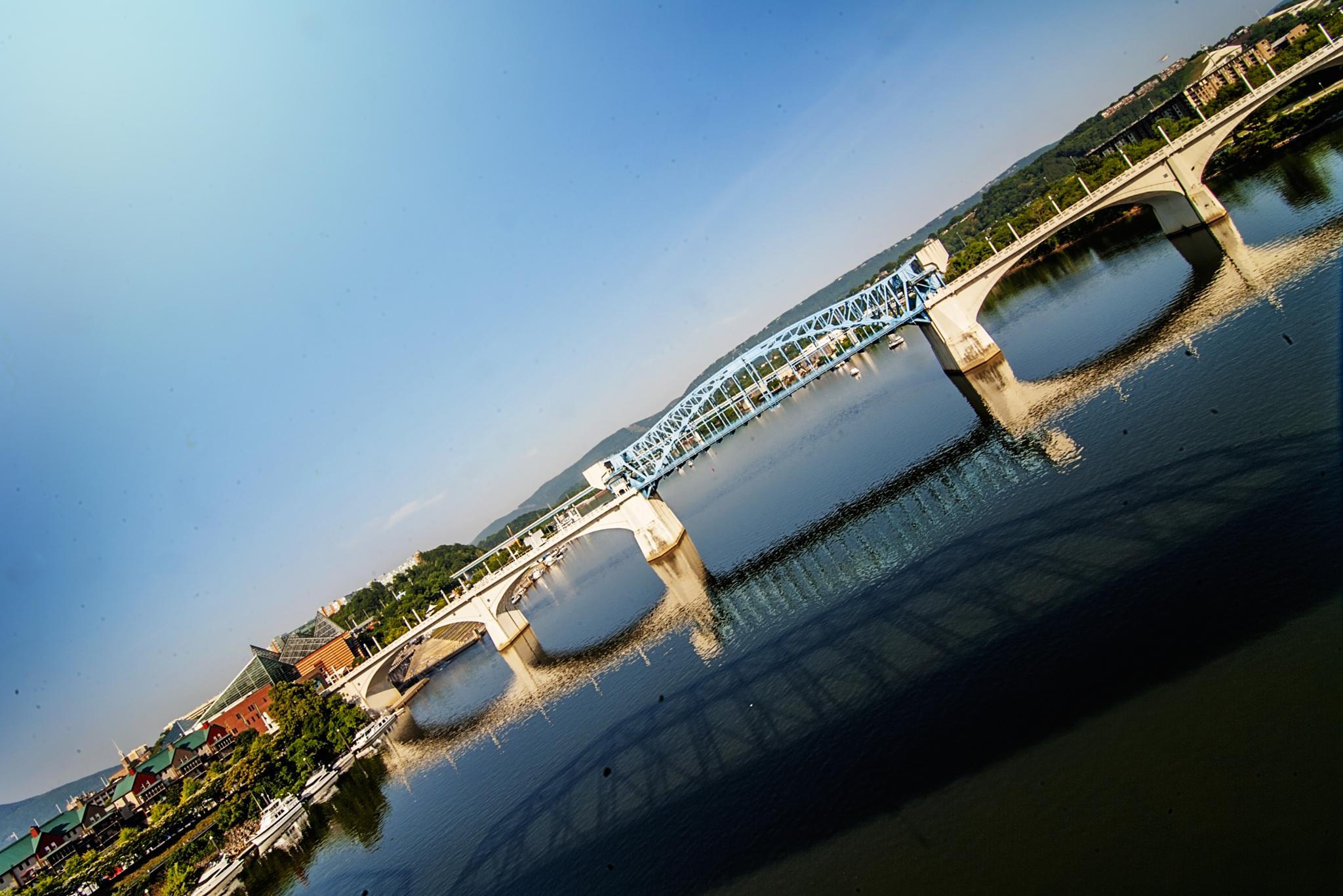 Bridge by JOSE LEON