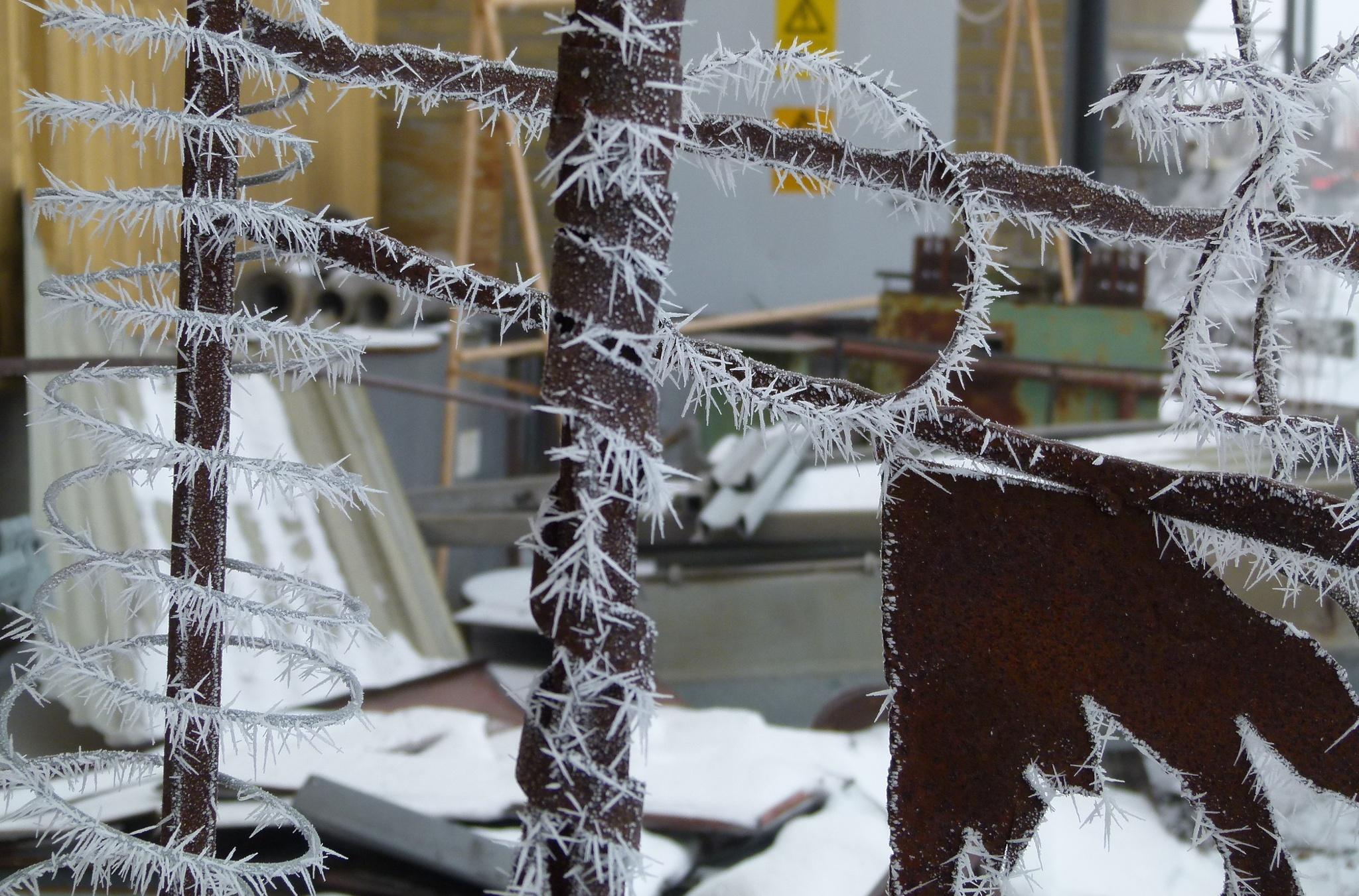 Wintercomposition I by peterliendeborg