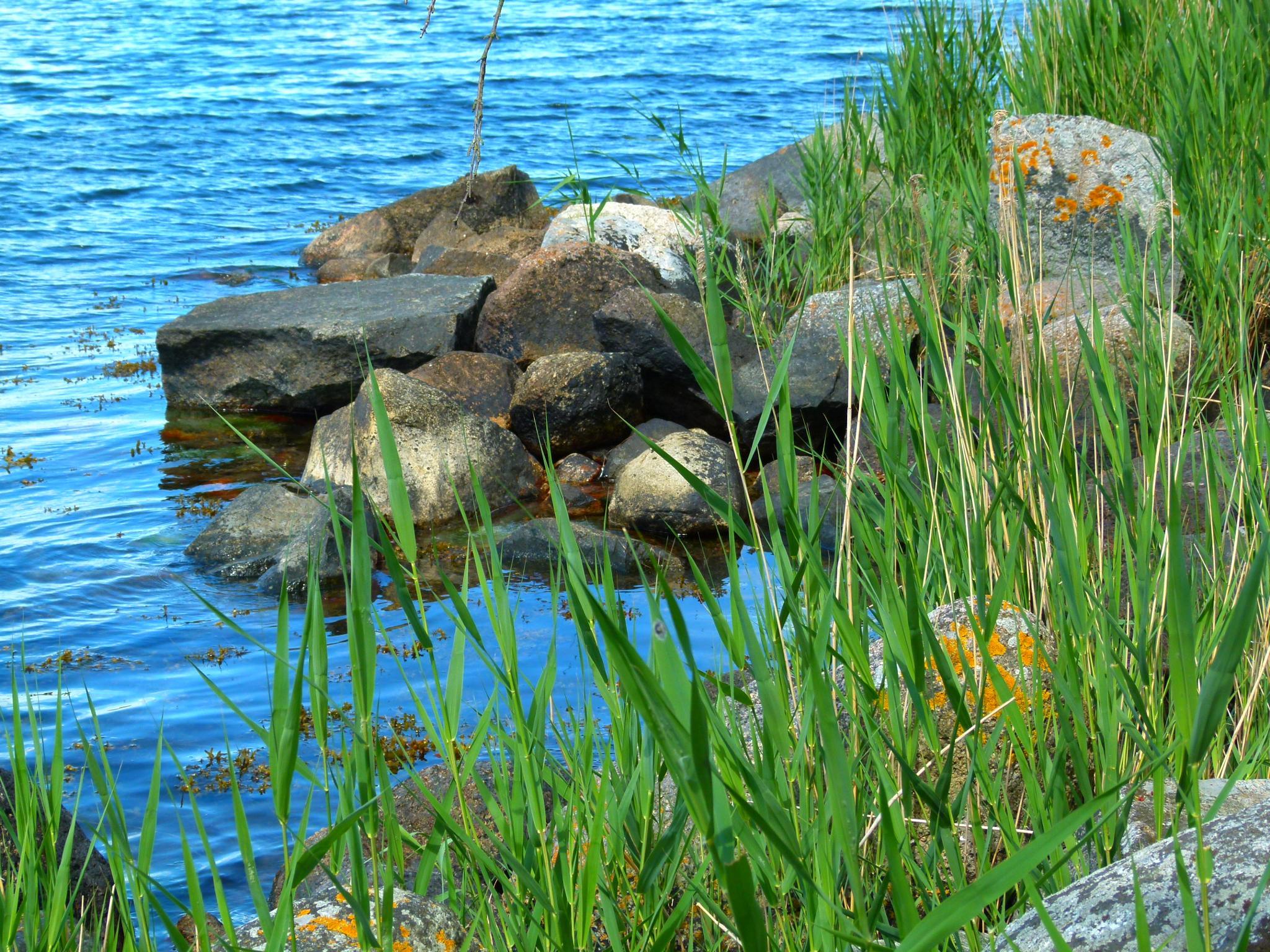 Very blue water with stones by peterliendeborg