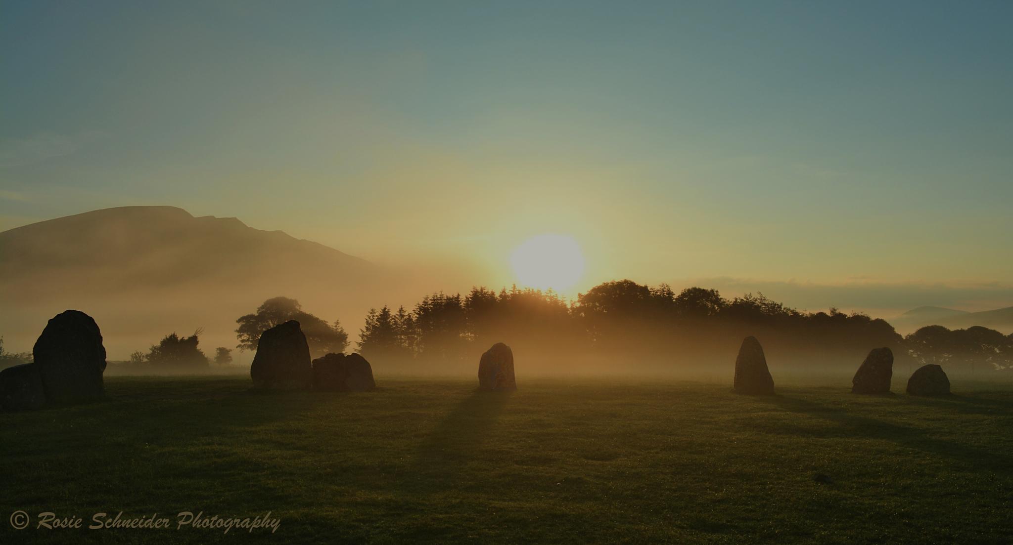 Midsummer Dawn by Rosie Schneider