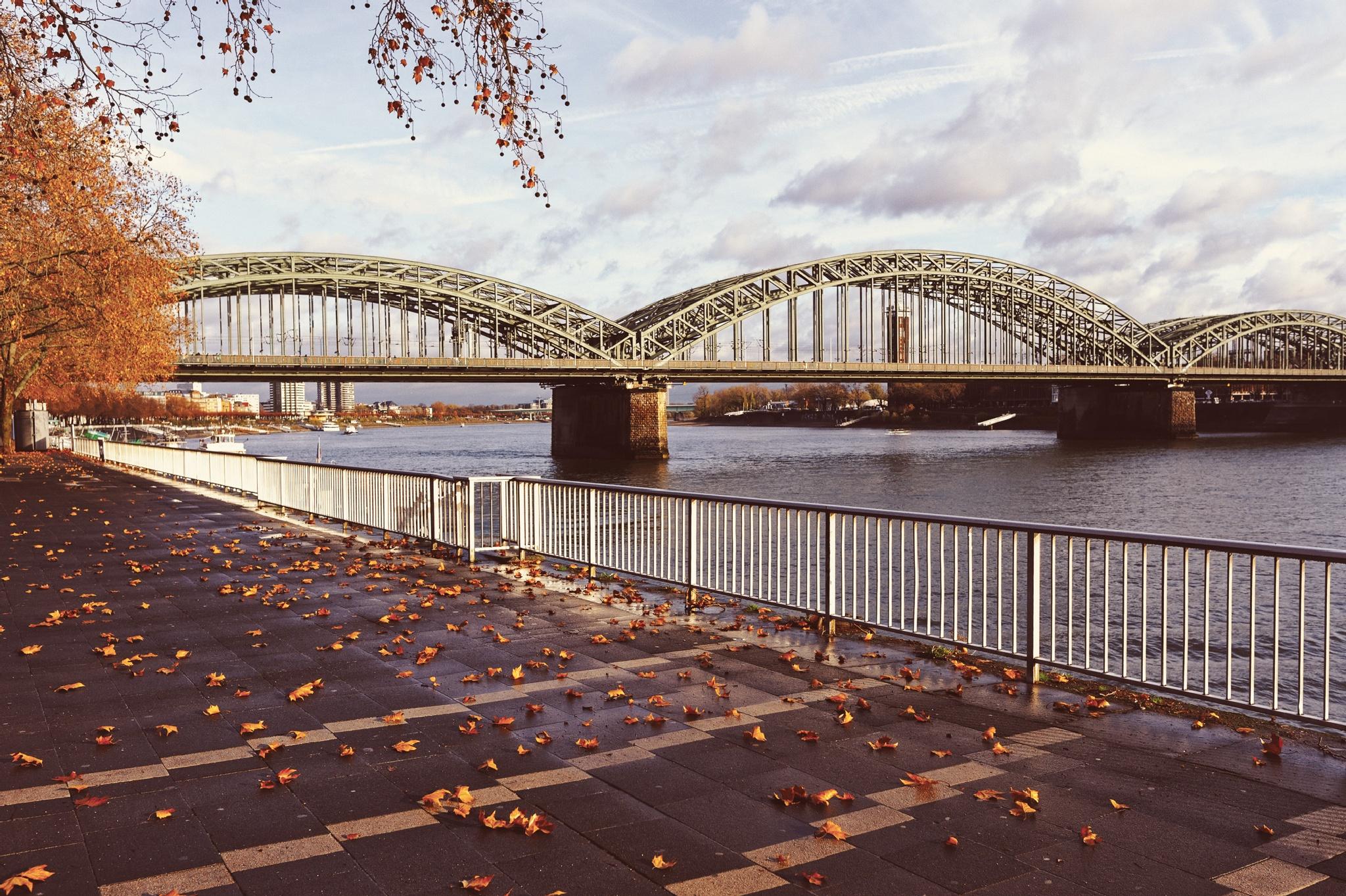The Hohenzollern bridge. by mihaipiscureanu