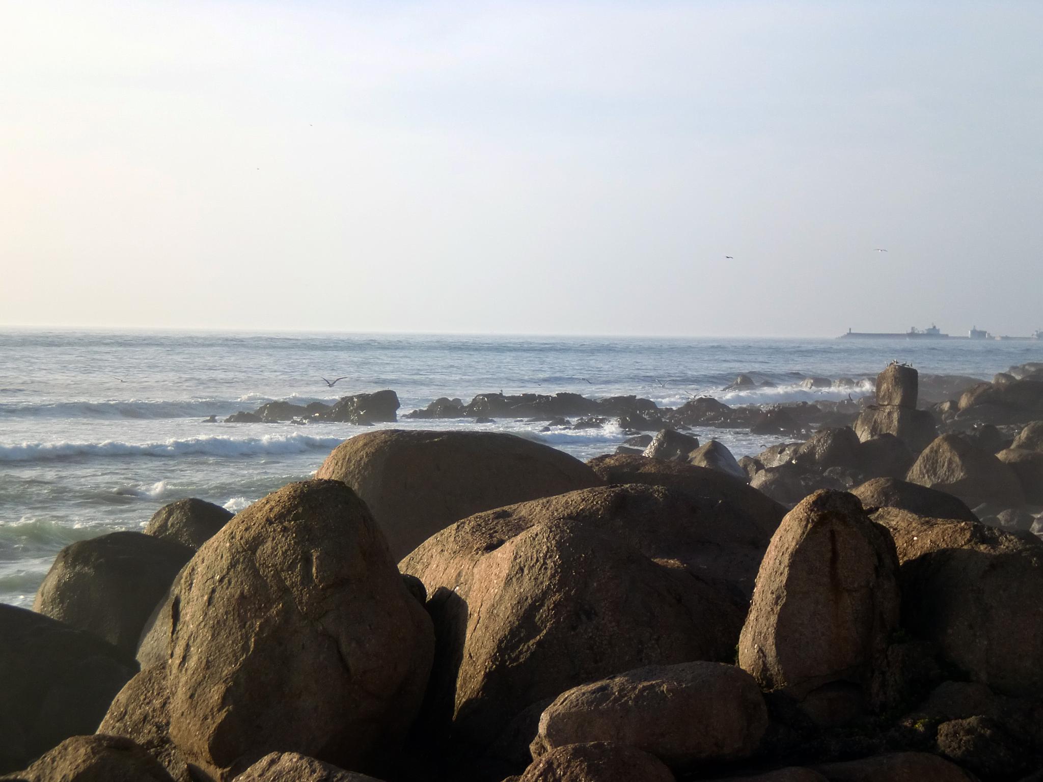 Stones on the beach by Fernando