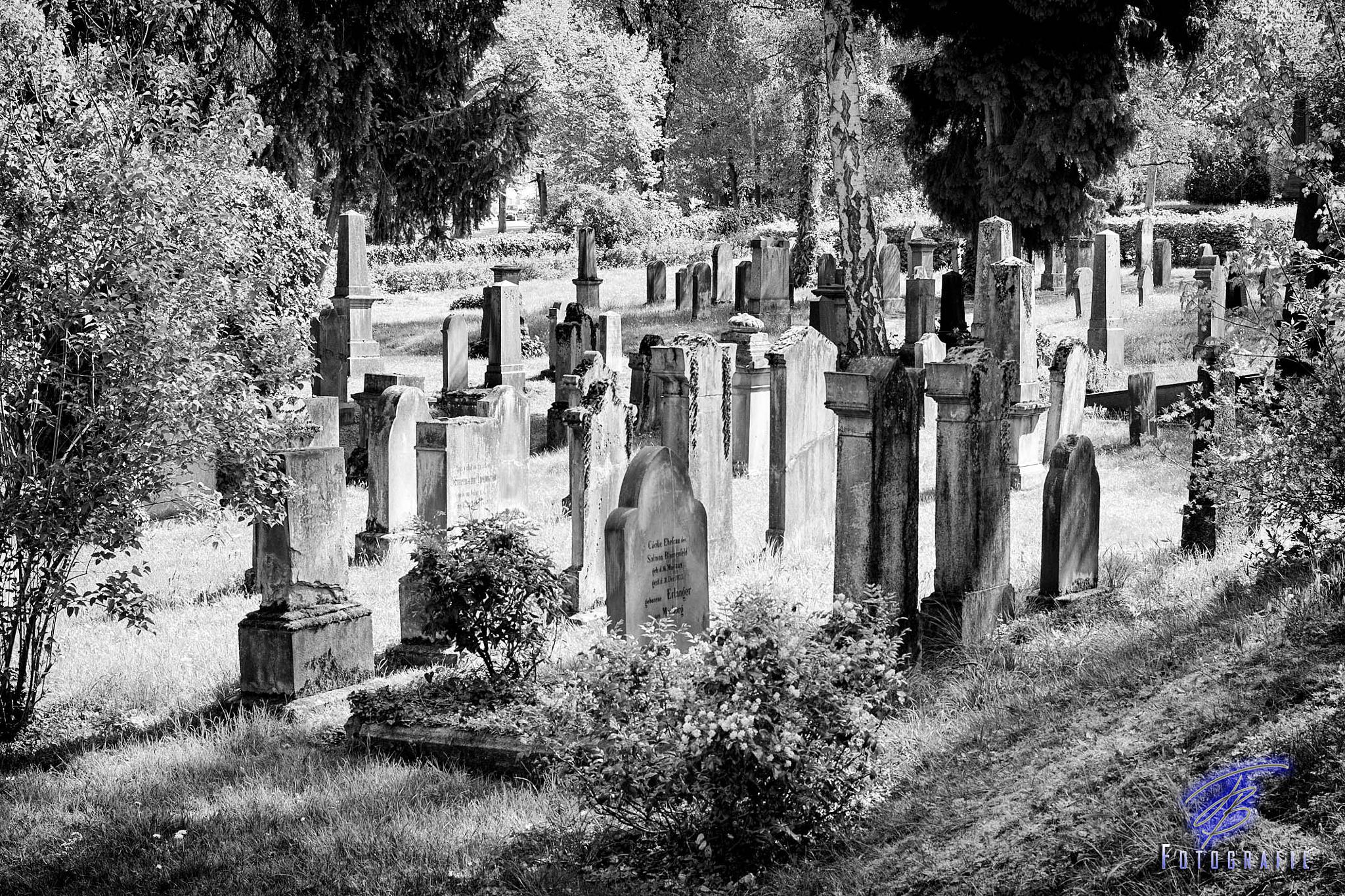 Alter Friedhof, Giesen by Frank-Beck-Giessen