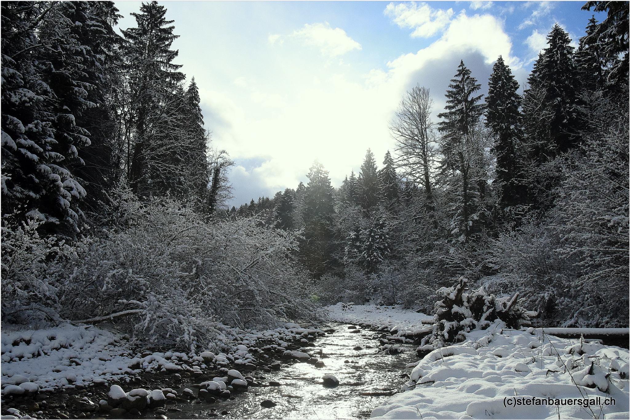 """""""winter river creek"""" by BauerStefan"""