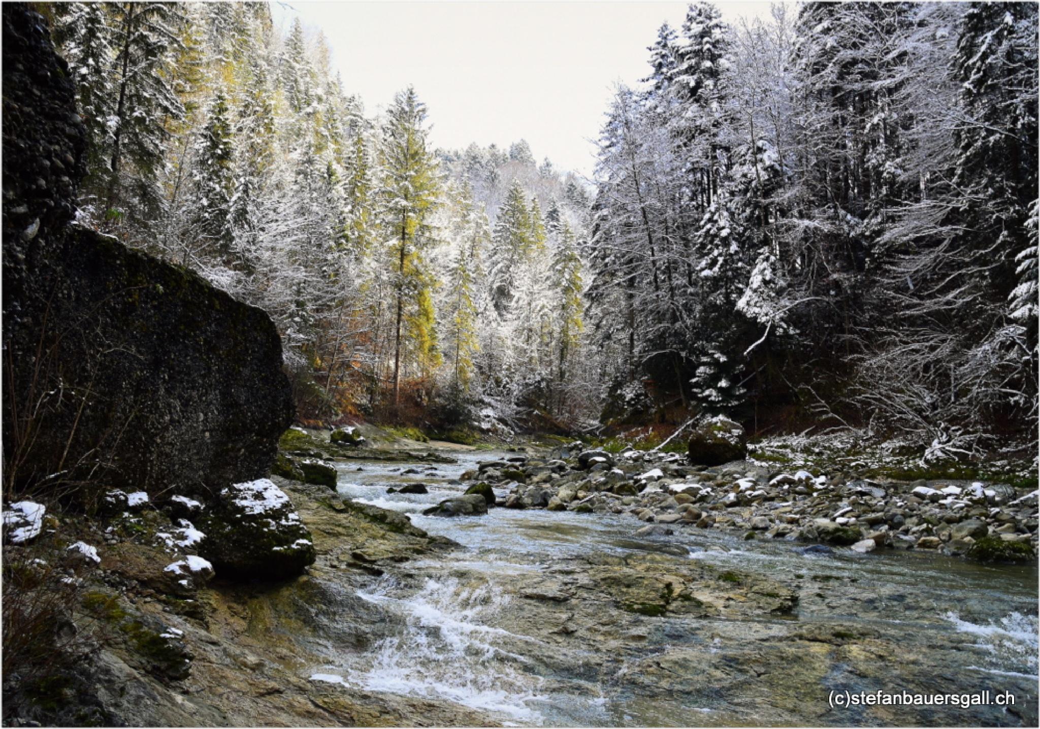 """""""river creek"""" by BauerStefan"""