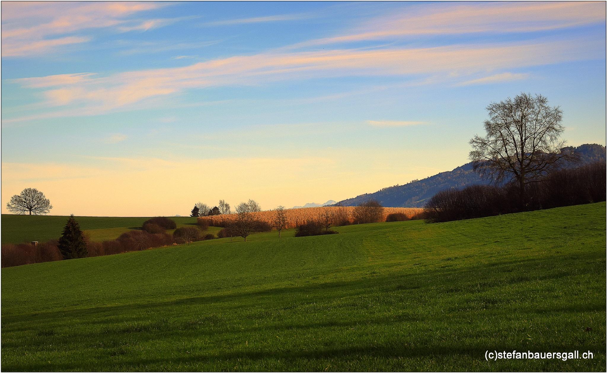 """""""winterlandscape"""" by BauerStefan"""