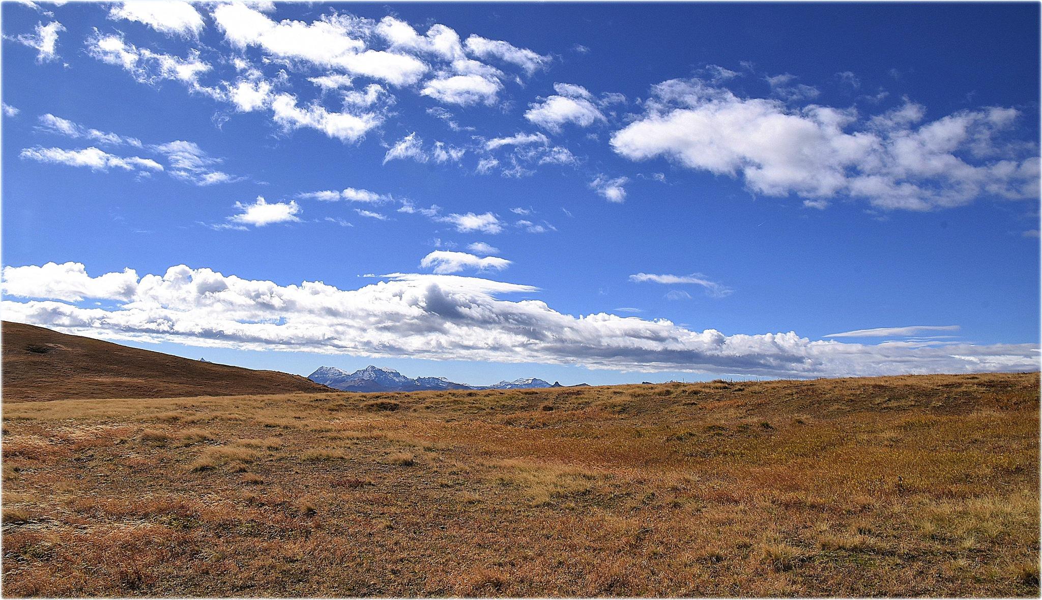 """""""landscape,"""" by BauerStefan"""