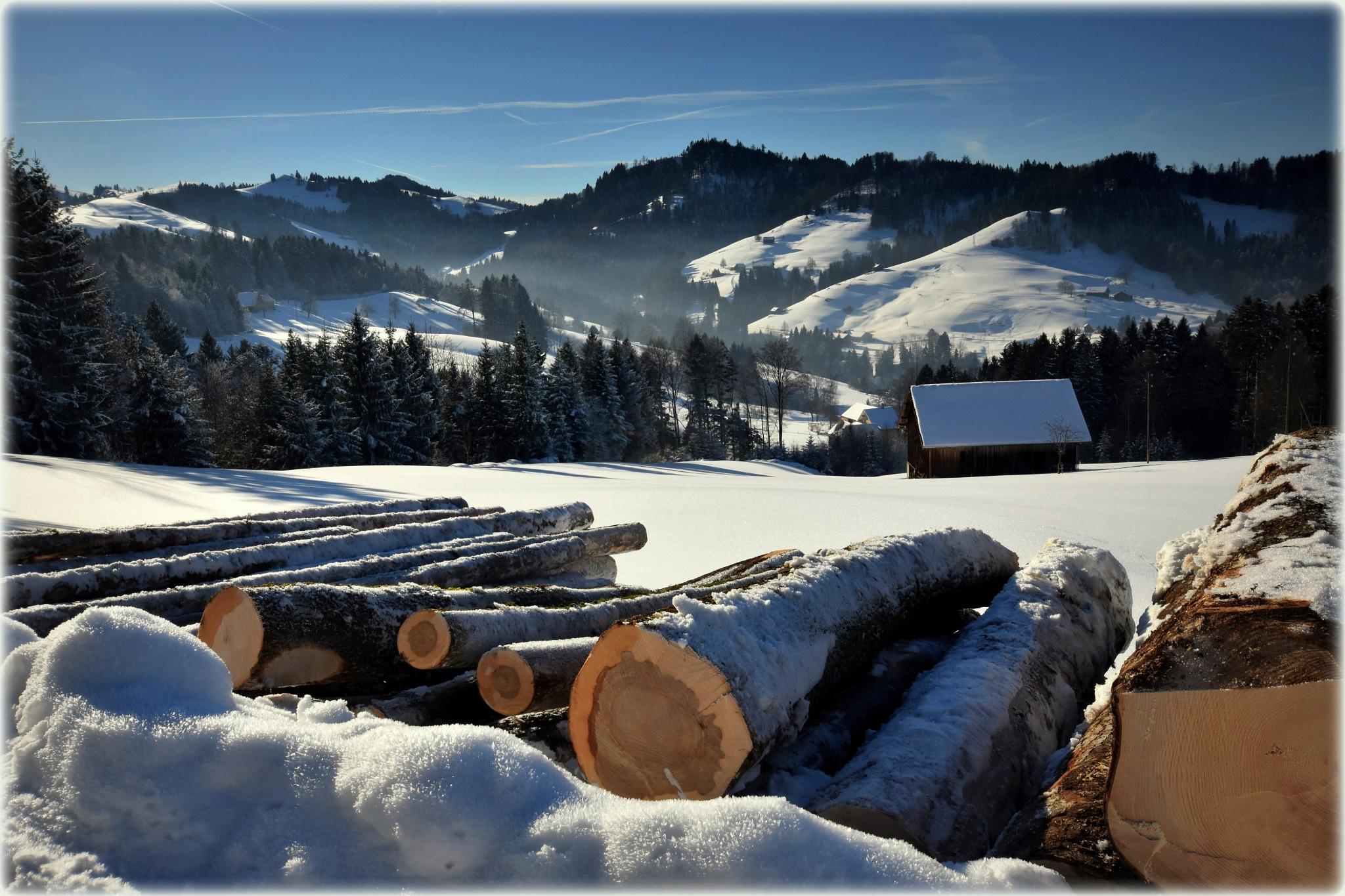 """""""winterwork"""" by BauerStefan"""