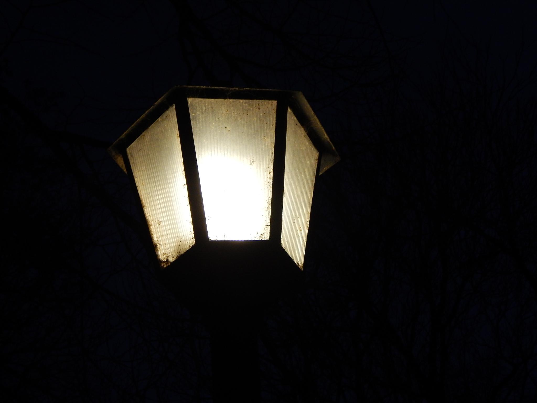 A light by dani.dinkova.39