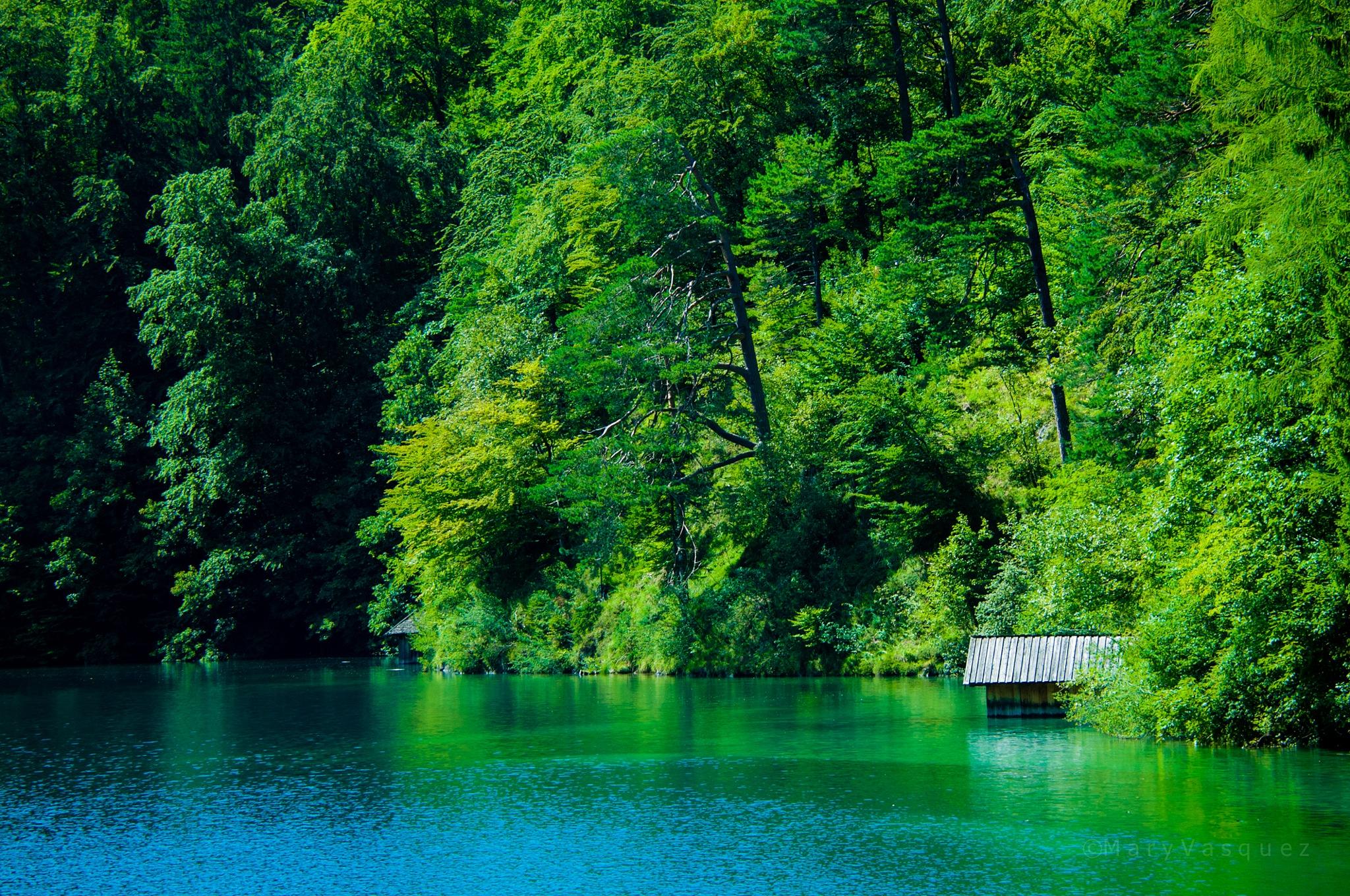 Alpsee Lake, Germany. by Mary Vasquez