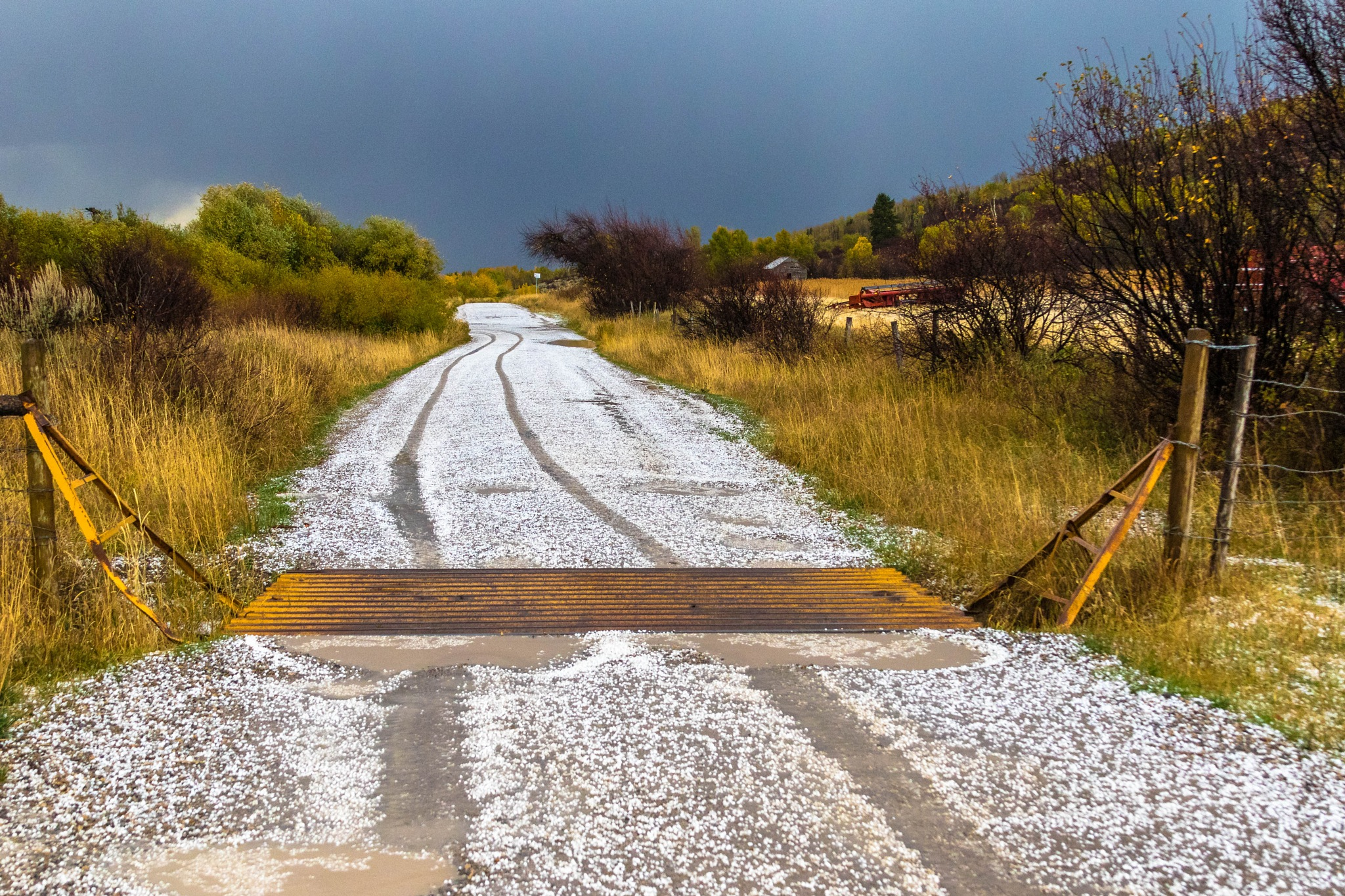 Cattle Guard Rail and Hail by drchad480