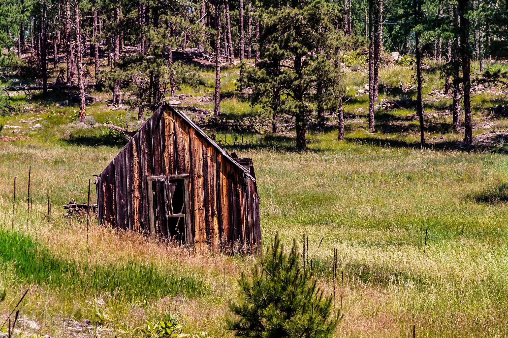 Old Cabin 2014 by drchad480