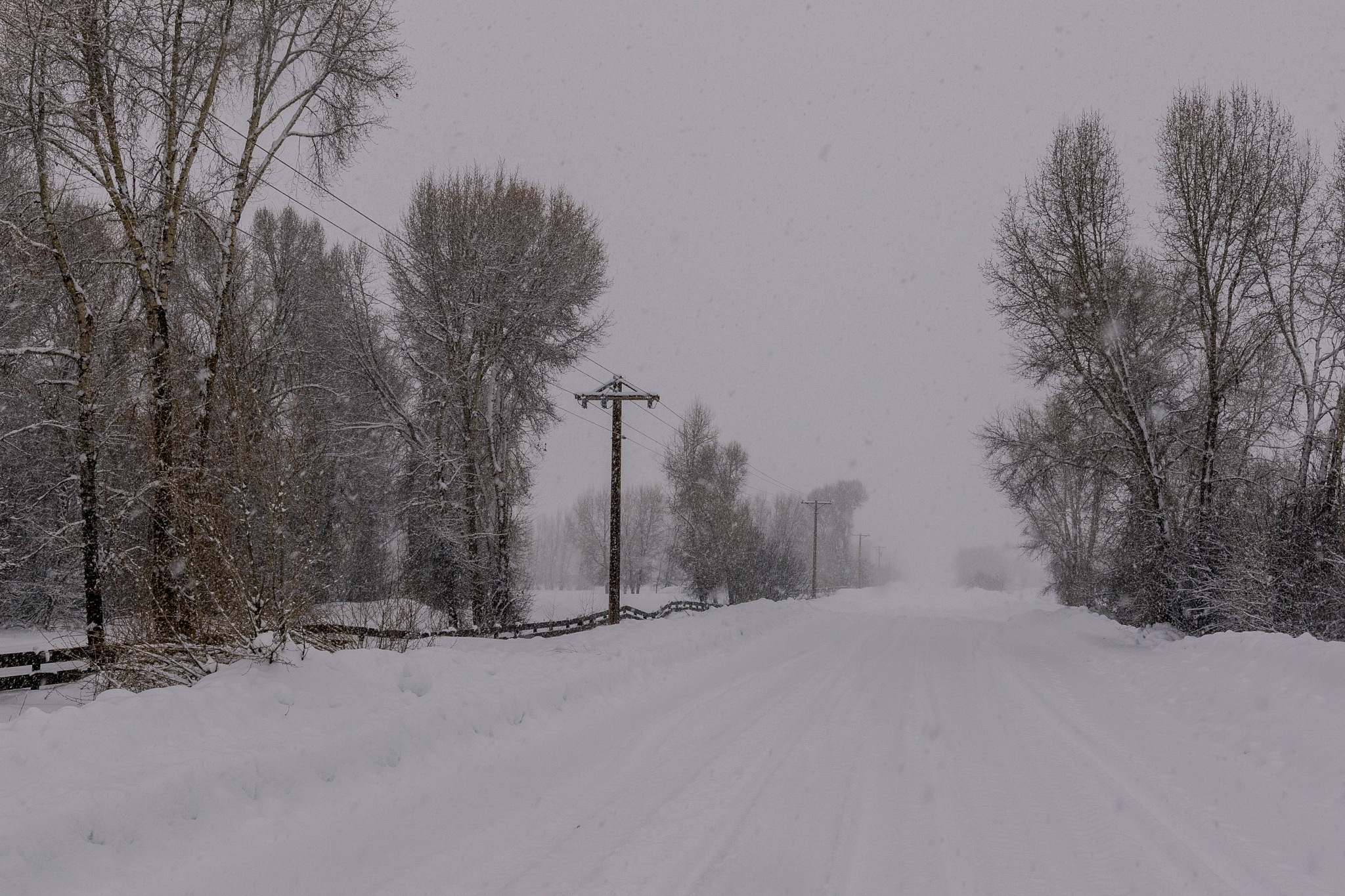 Snowy Road by drchad480