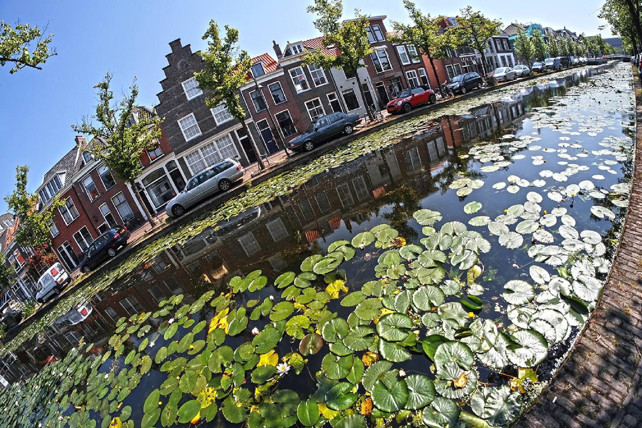 Delft, Holland by David Solodar