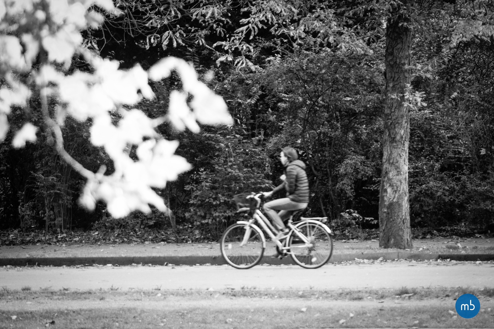 le cycliste by Maxime Bataille photography