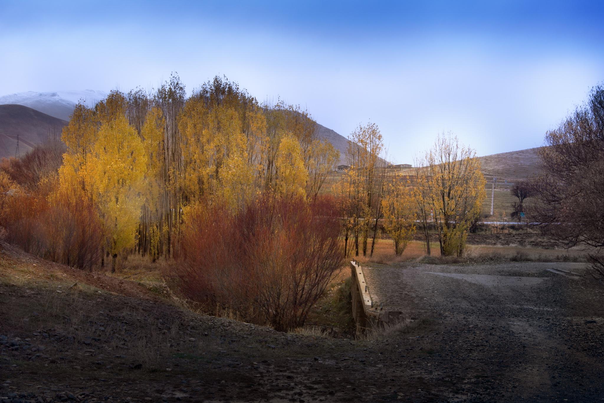 Dream bridge by me_ghp