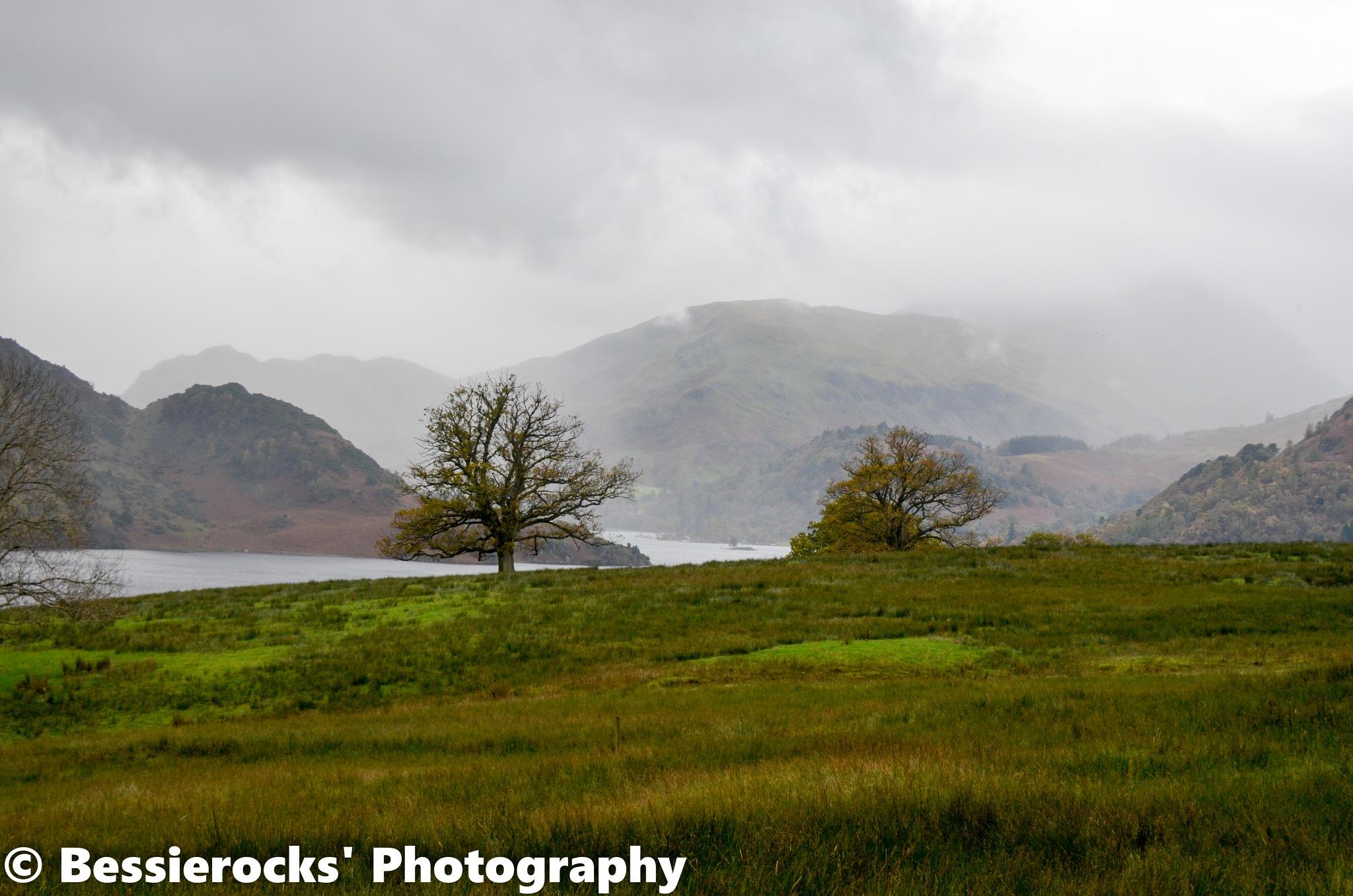 Misty Hills by Bessierocks' Photography