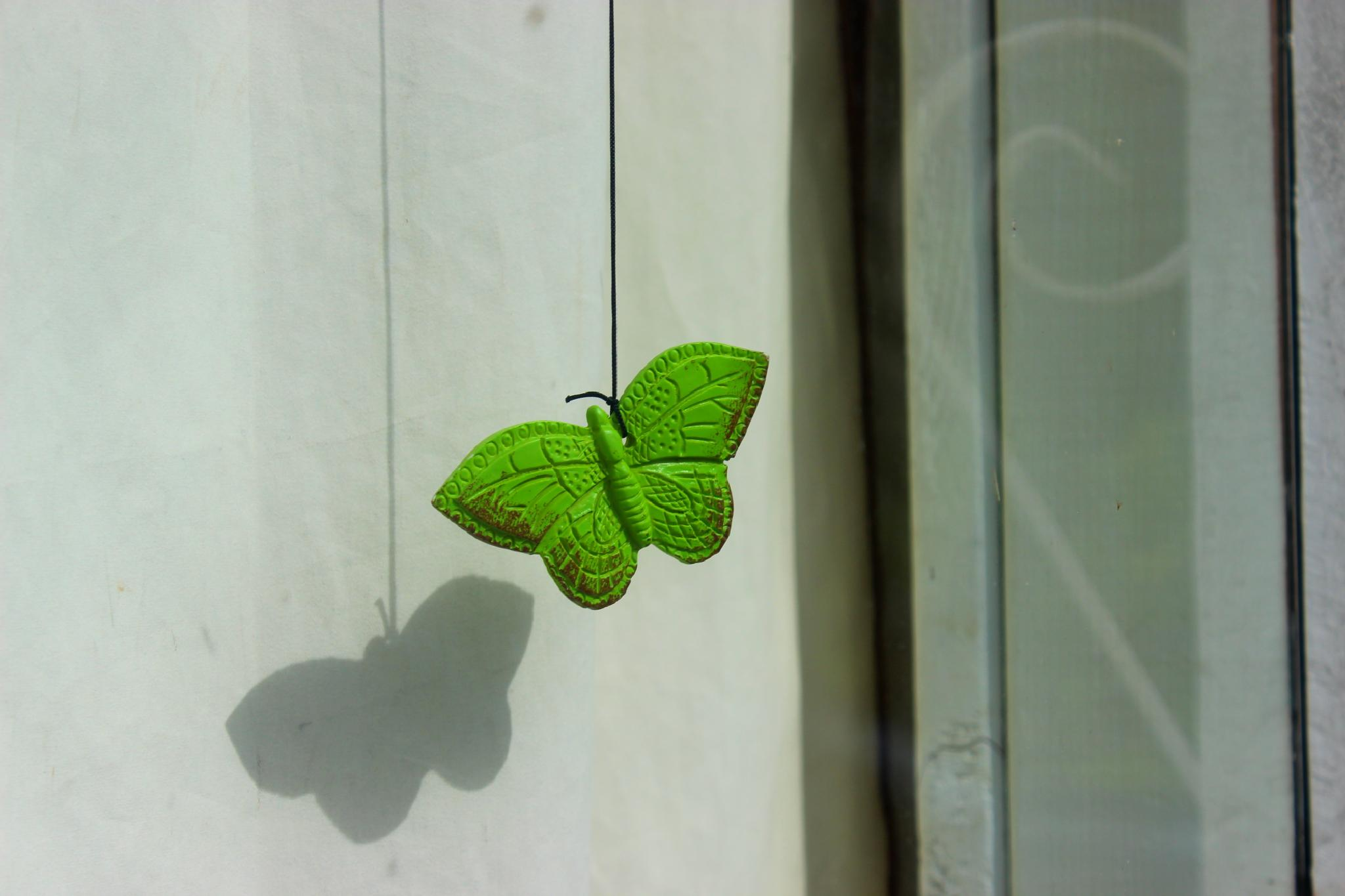 Green Butterfly by christie.henderson.5