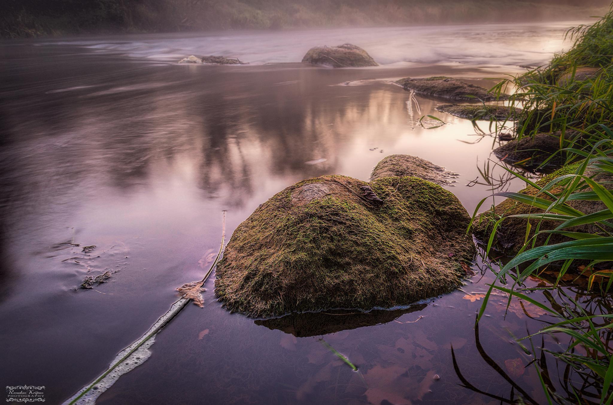 River by RenatasKripas