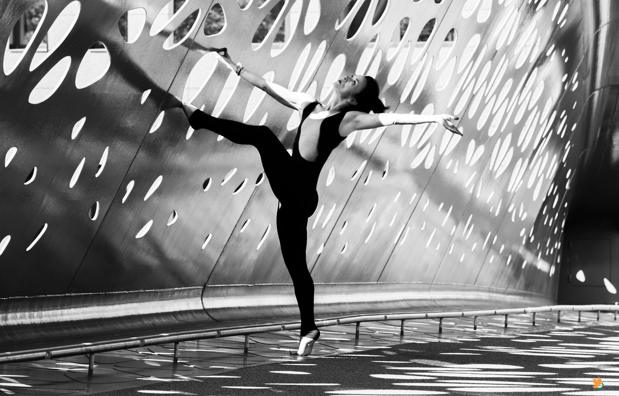 Ballerina  by sajinvss