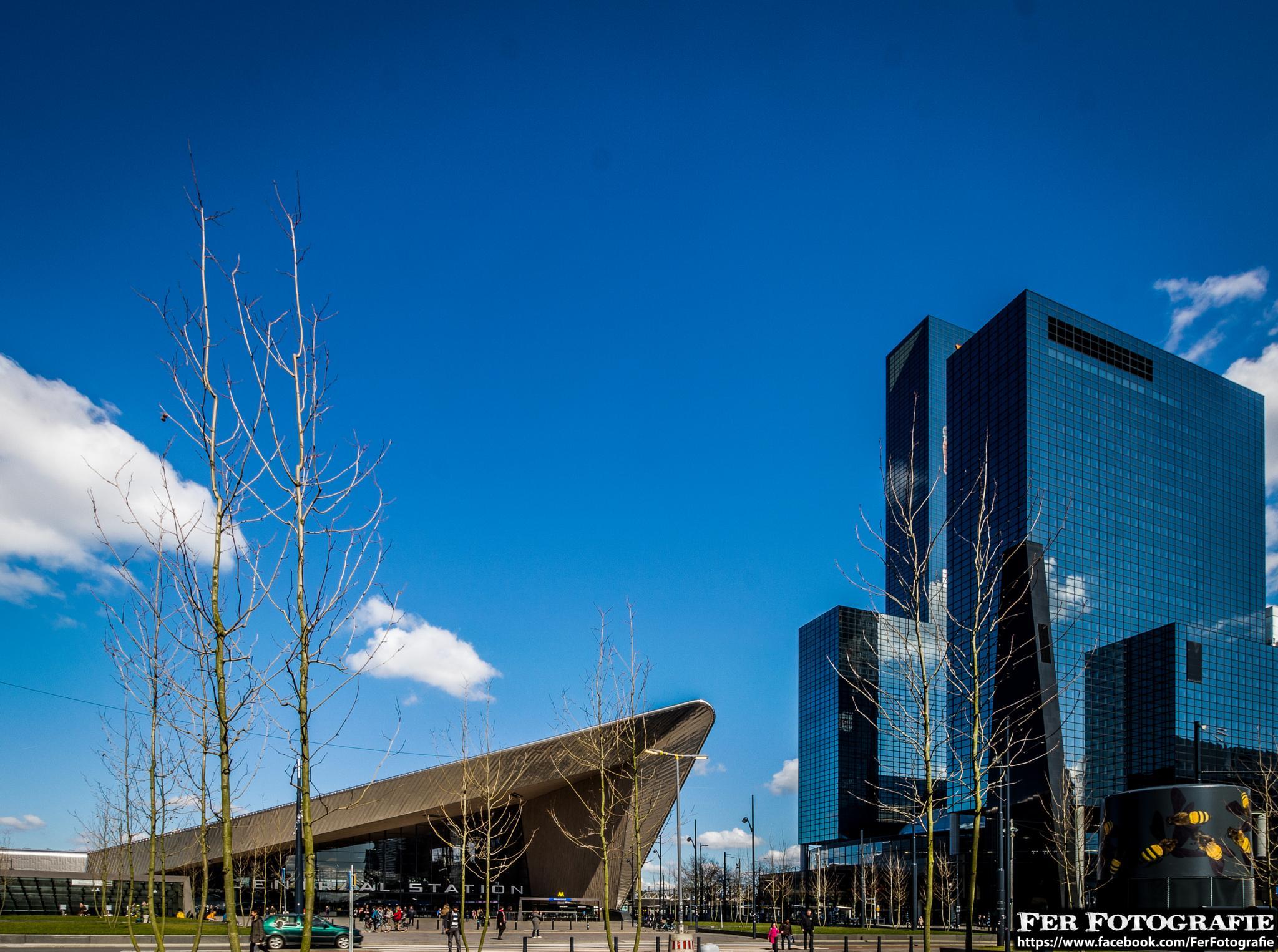 "Rotterdam Central Station and ""Nationale Nederlanden""  by Fer Herwaarden"