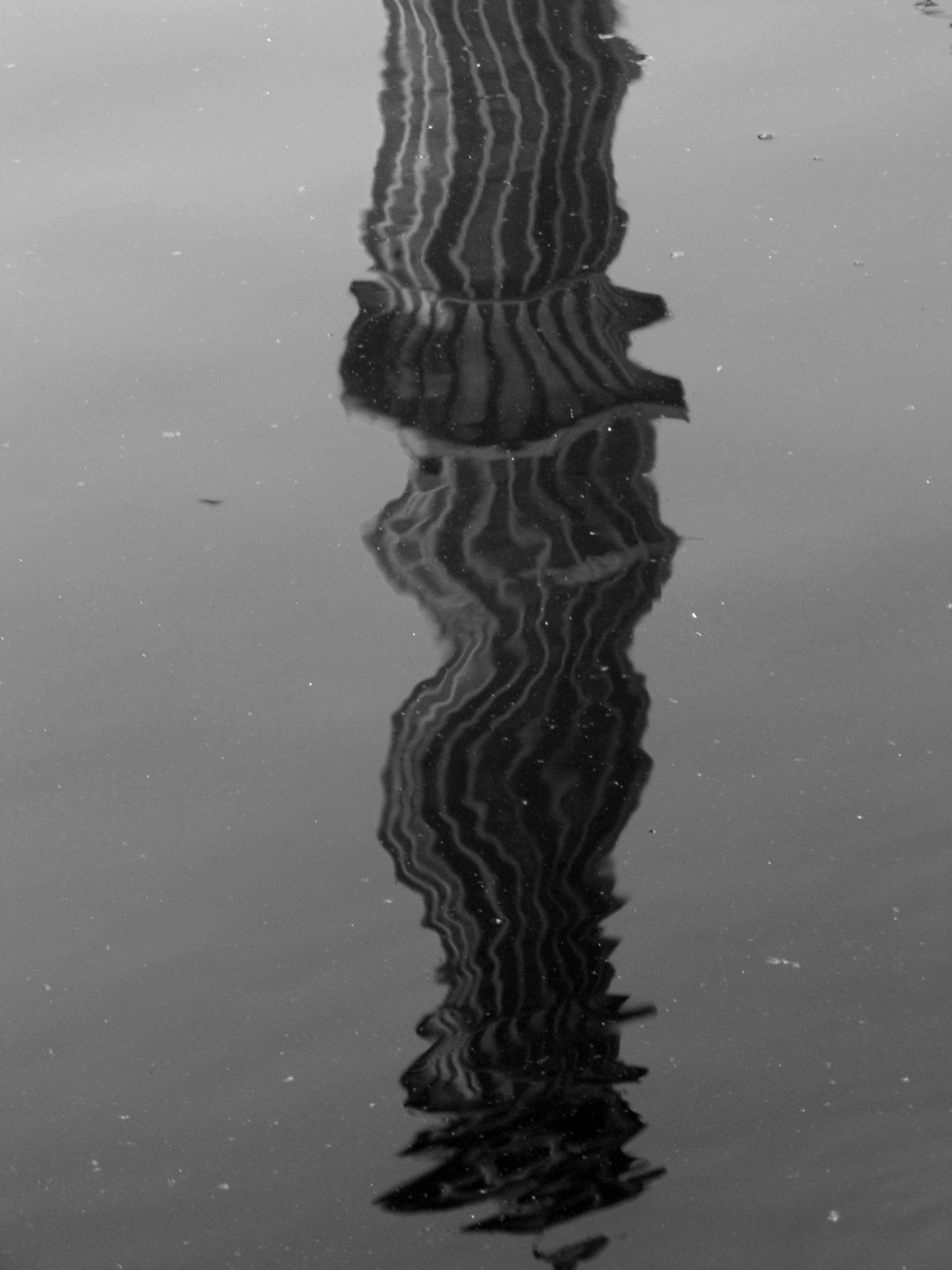 reflection of a minaret by annapoorna.sitaram