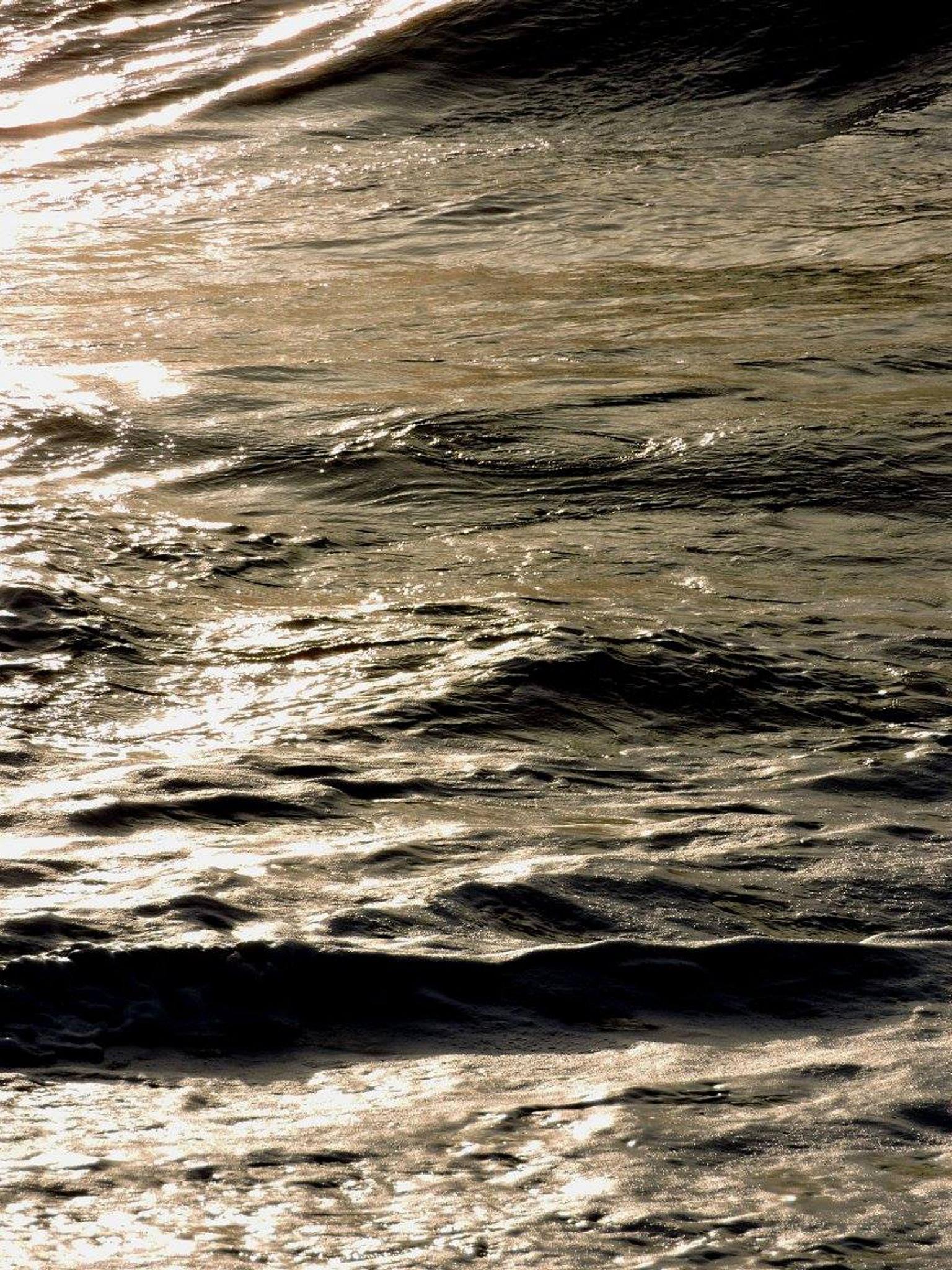 Untitled by annapoorna.sitaram