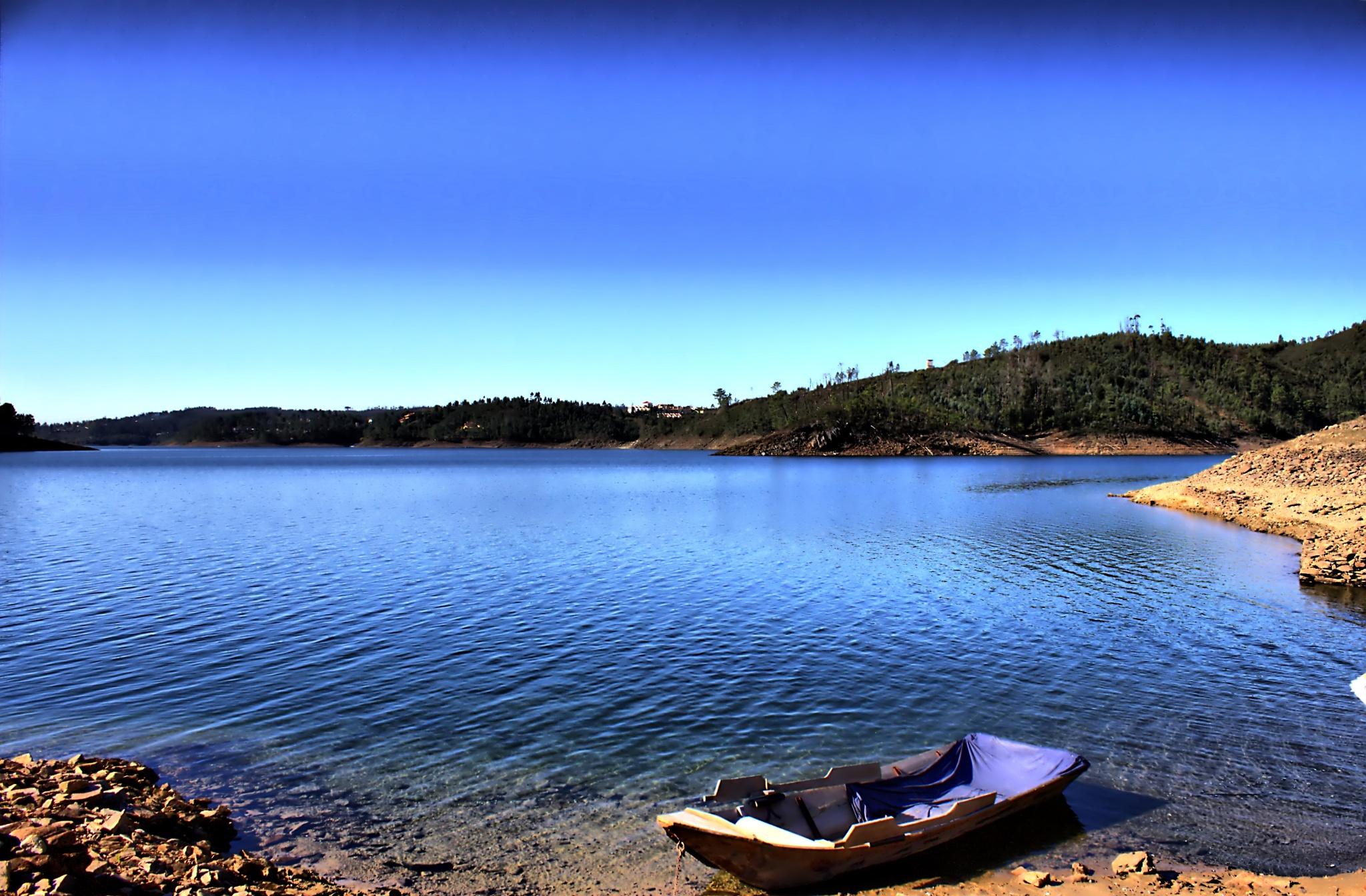 Let's go fishing by Joaquim Gaspar