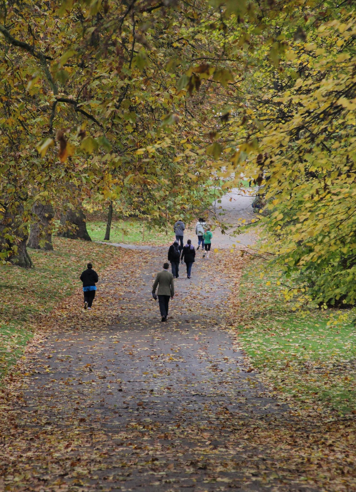 Autumn by sam.ashtari.7