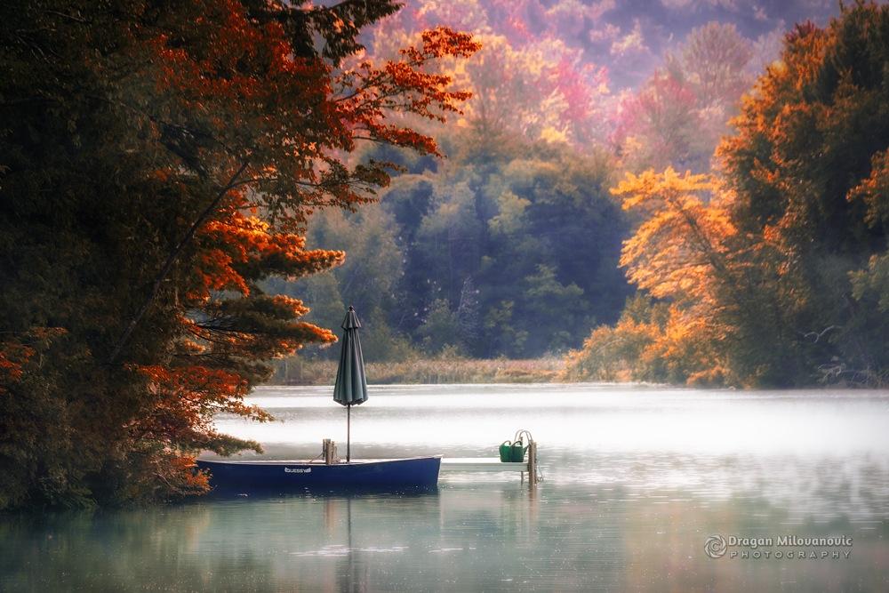 Autumn sonata by Dragan Milovanovic photography