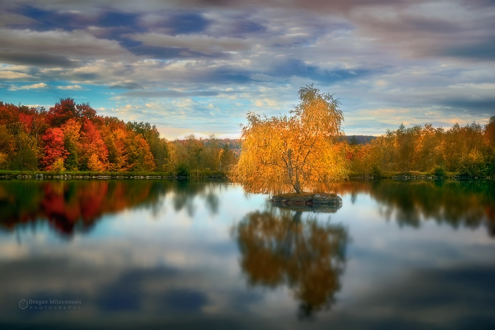 Reasons To Love Autumn by Dragan Milovanovic photography