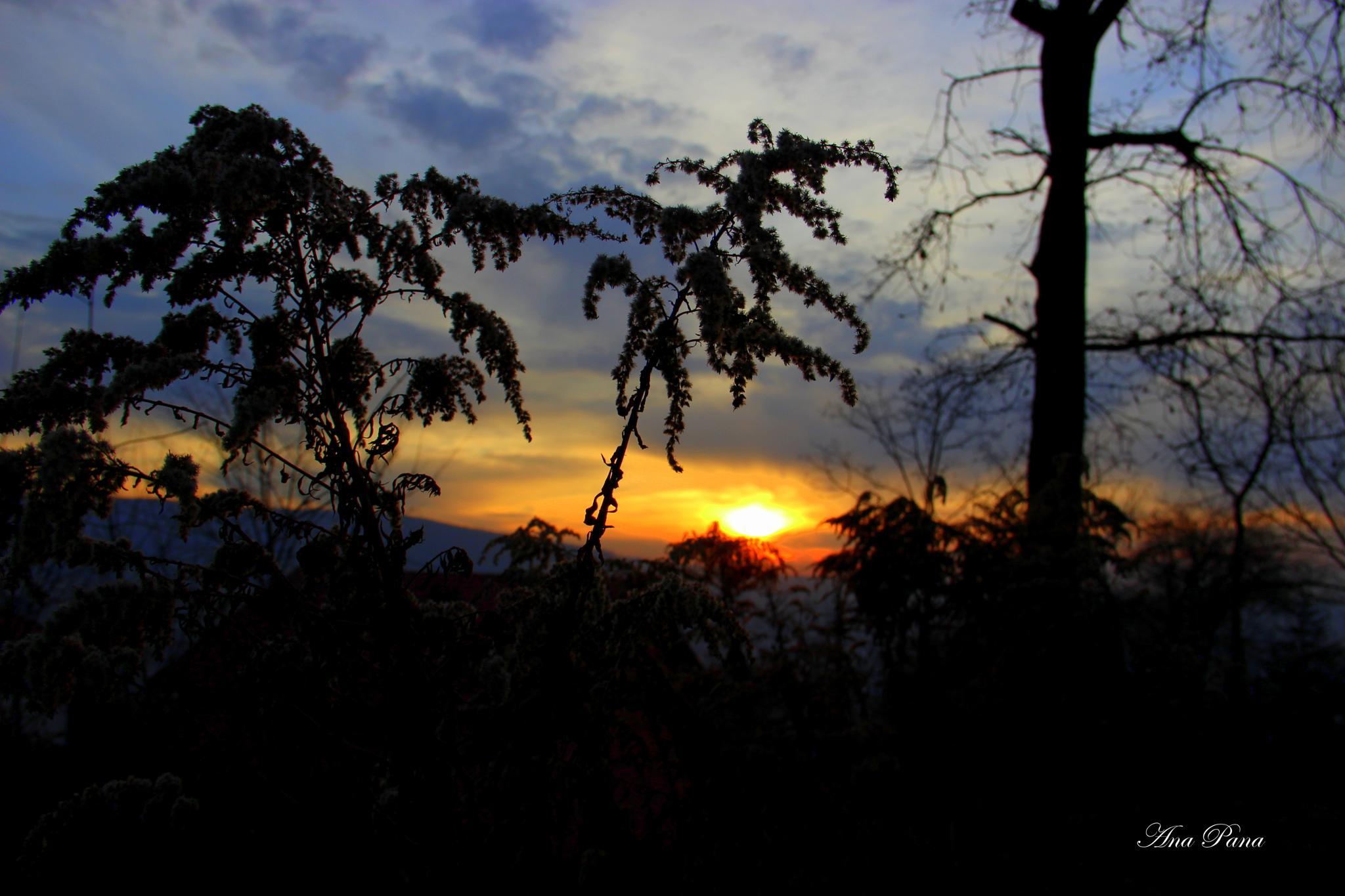 Today Sunset by ana.pana.733