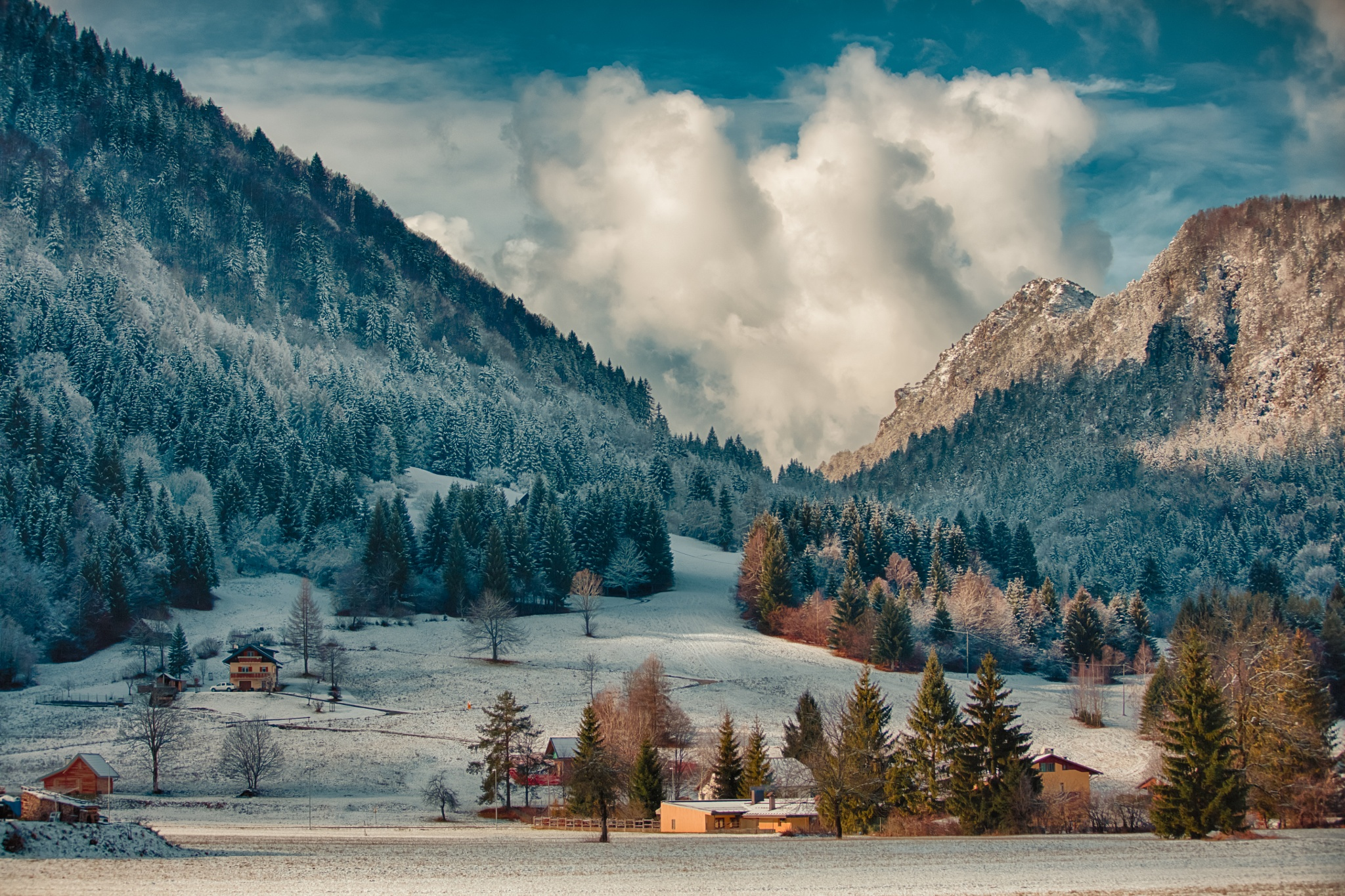 Winter by ottohargita
