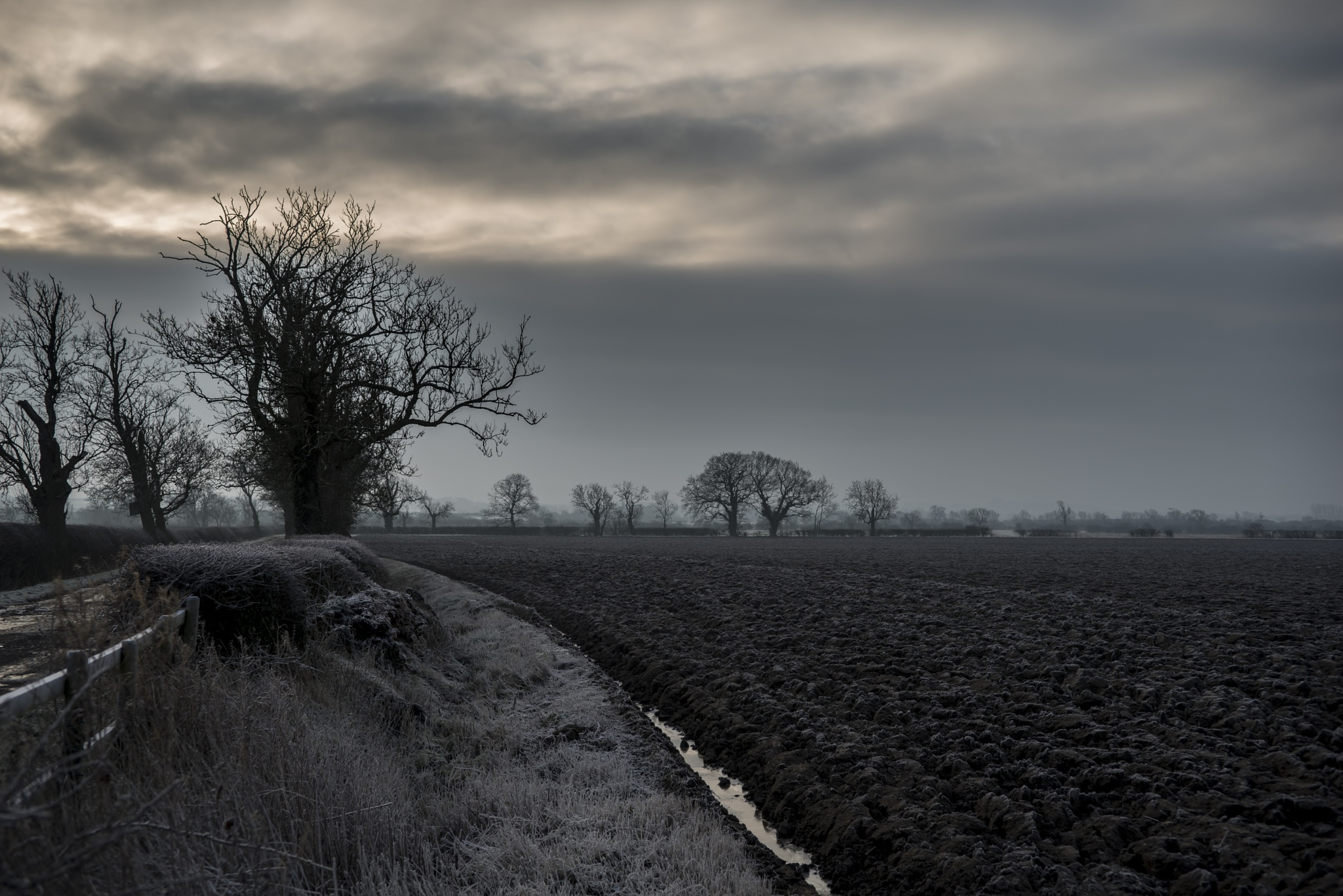 Cold Morning by Pete Feeny