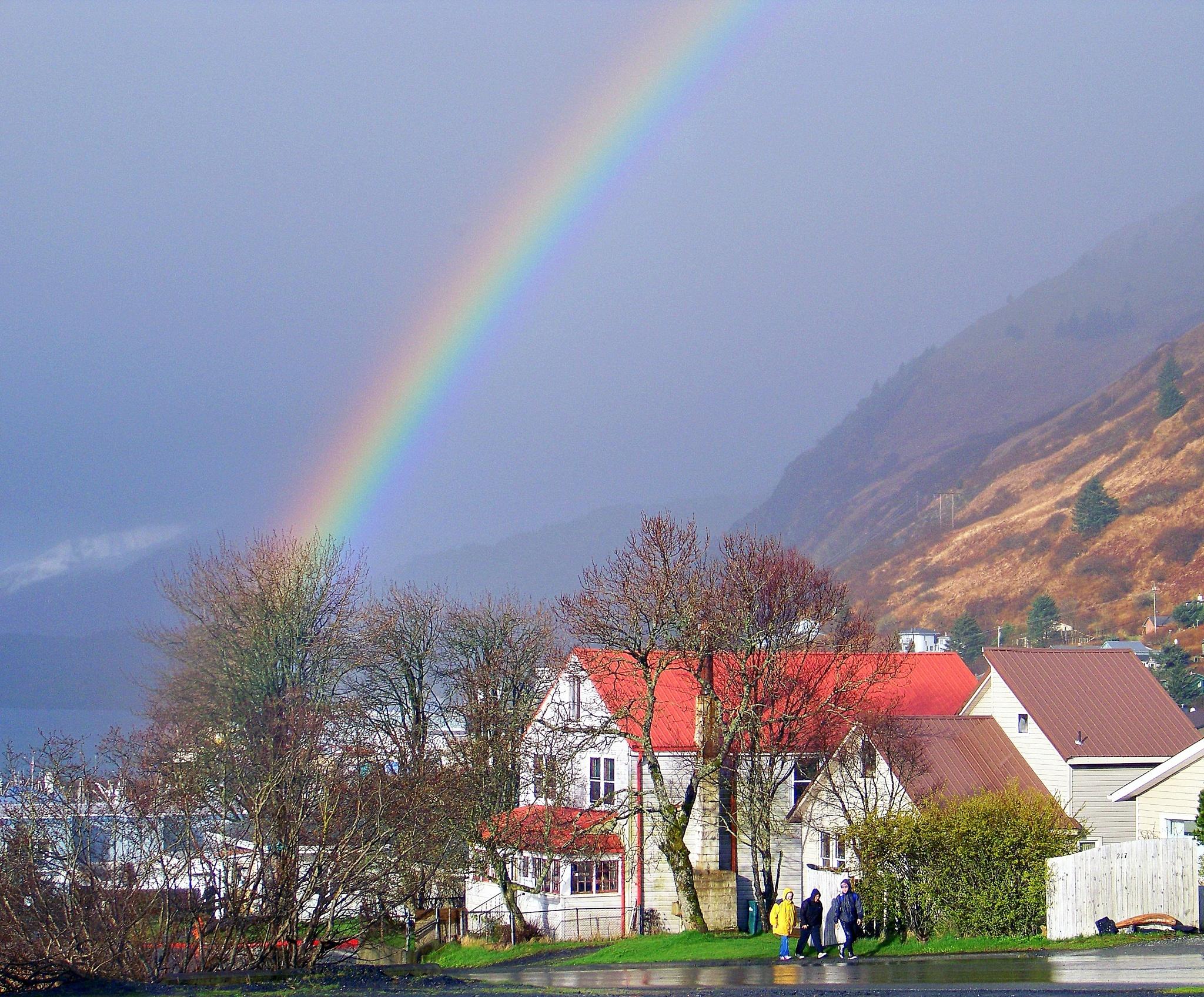Rainy Day Colors by jone suleski