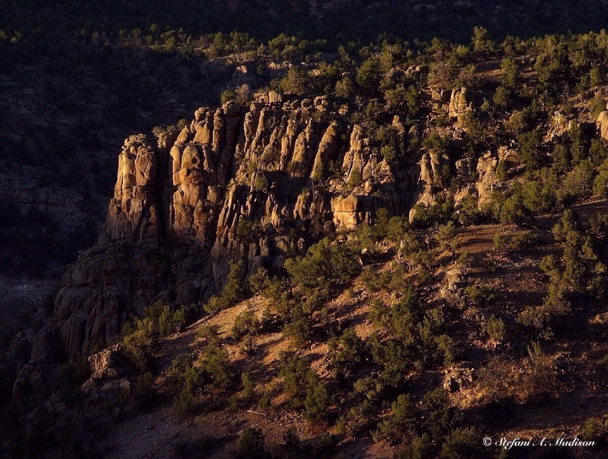 Palisades In Unaweep Canyon by Stefani Madison