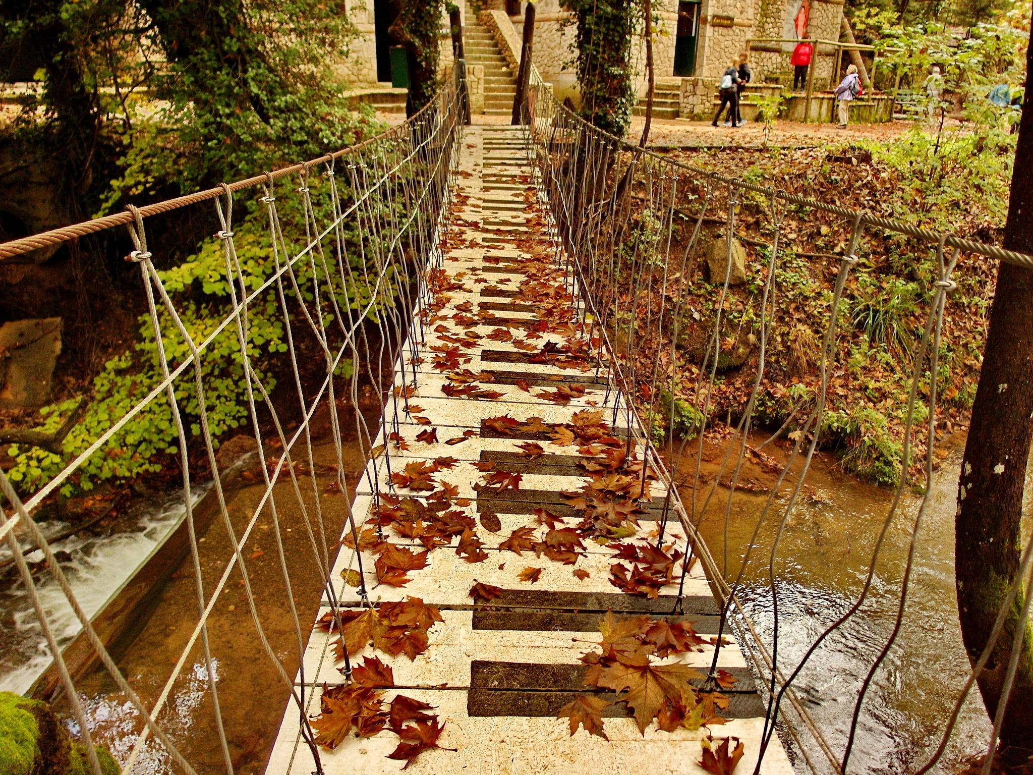 piano bridge by marimar
