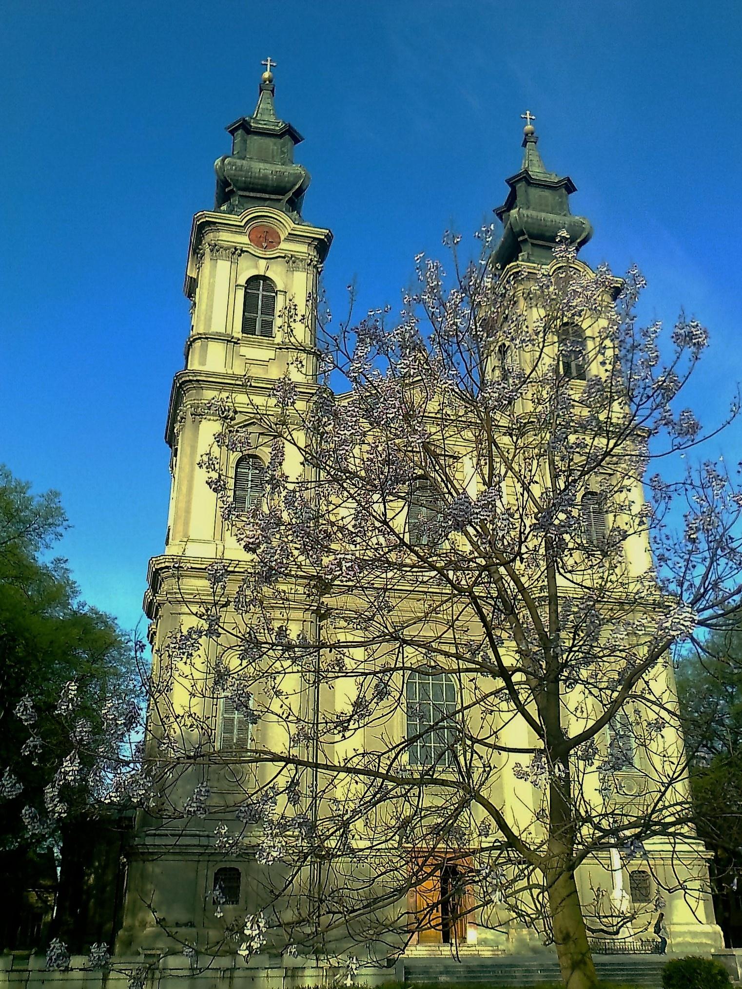 Katedrala Svete Terezije Avilske  by marija.sudarevic