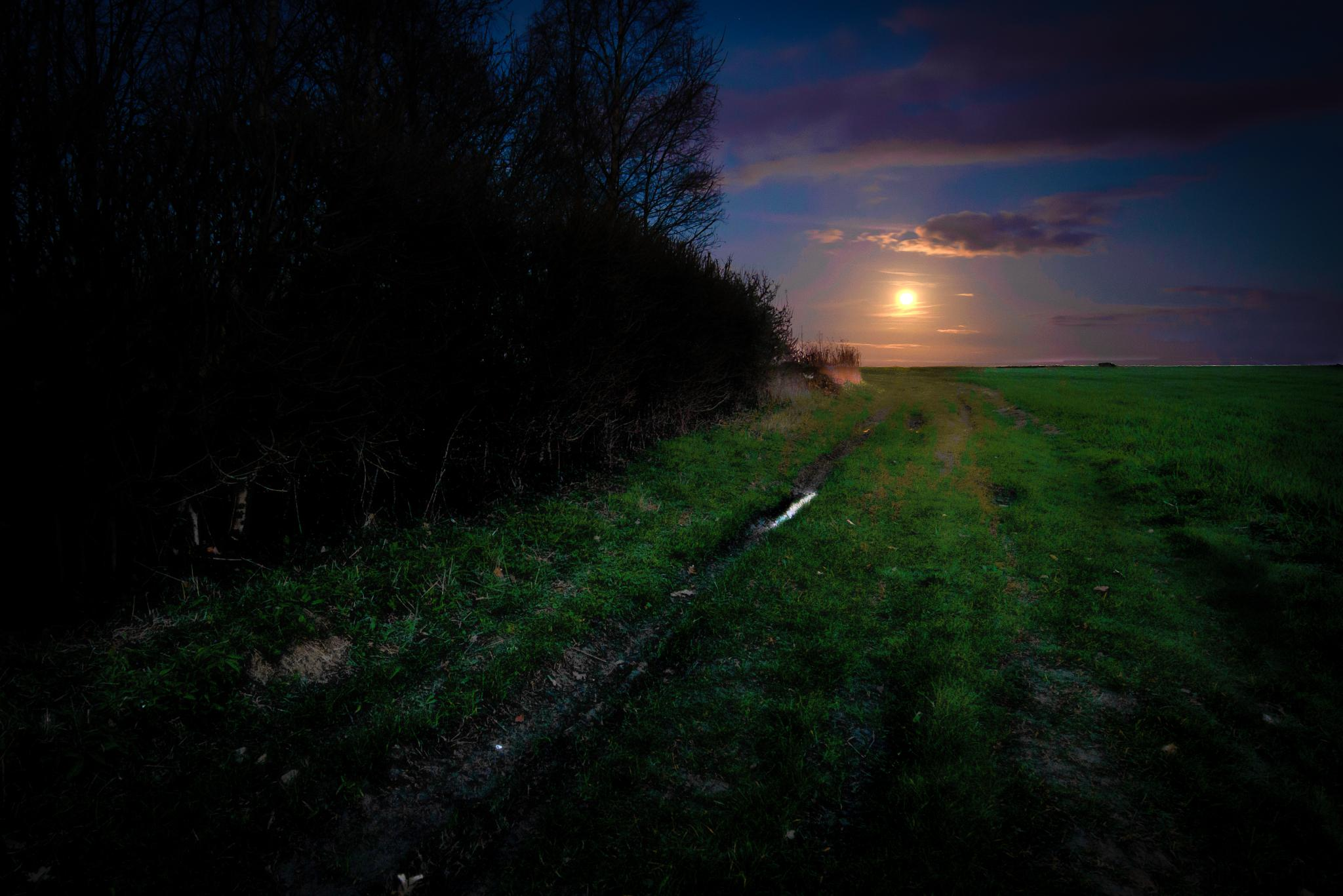 Follow the Track to the Moon by 39matt