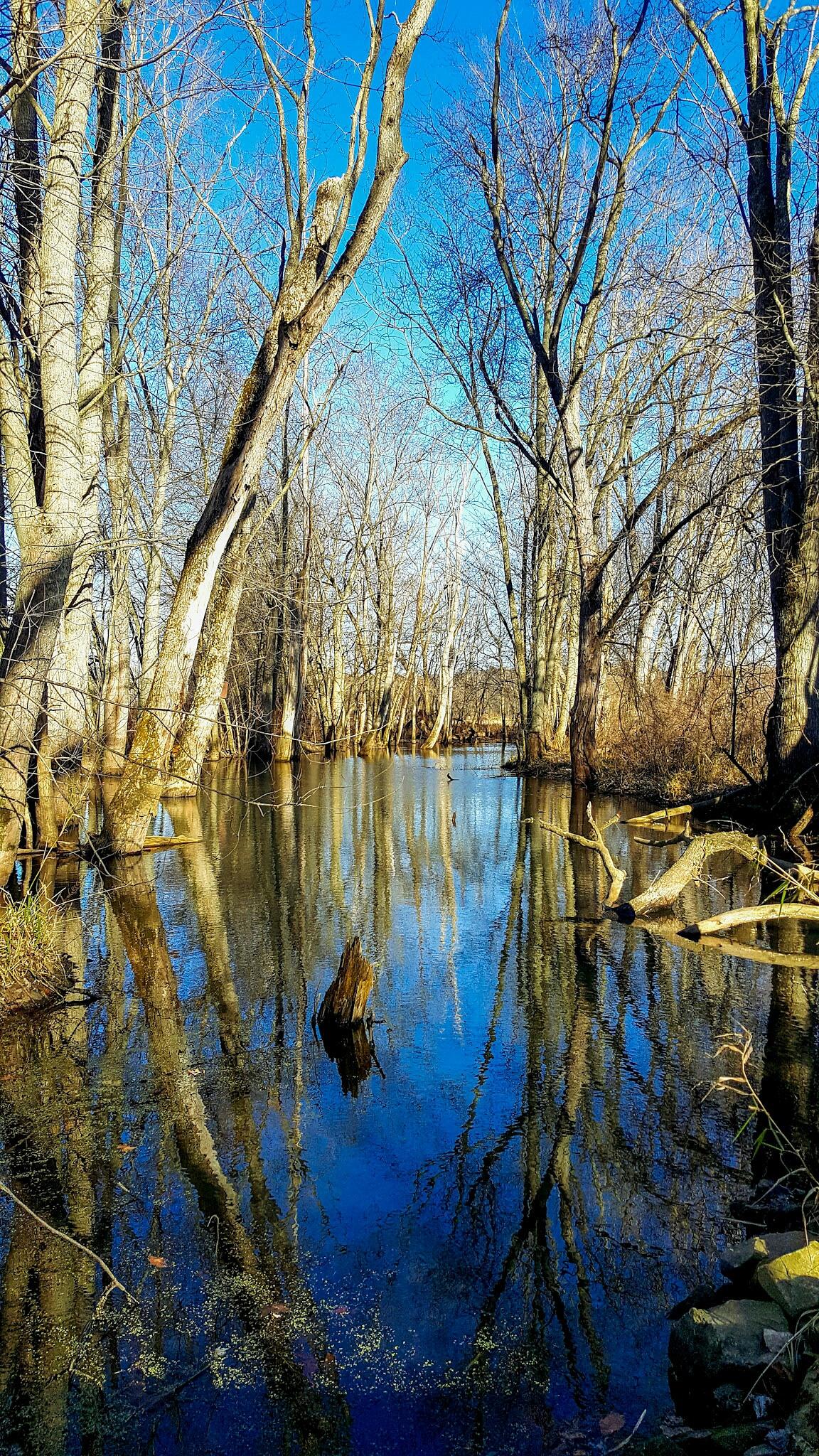 Calm water by jamesstull9