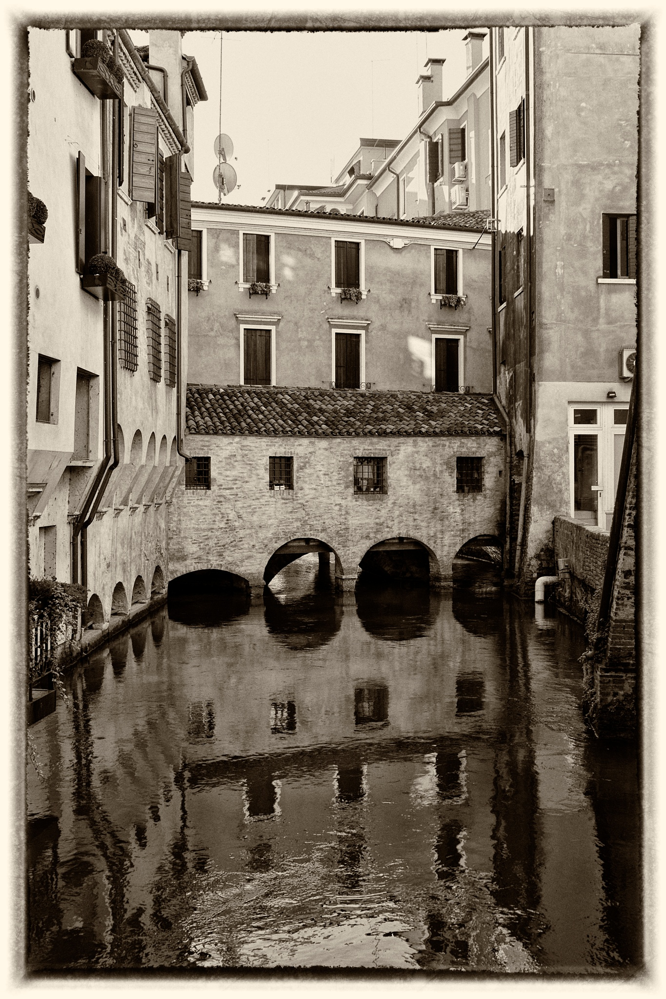 Treviso by Mkorho