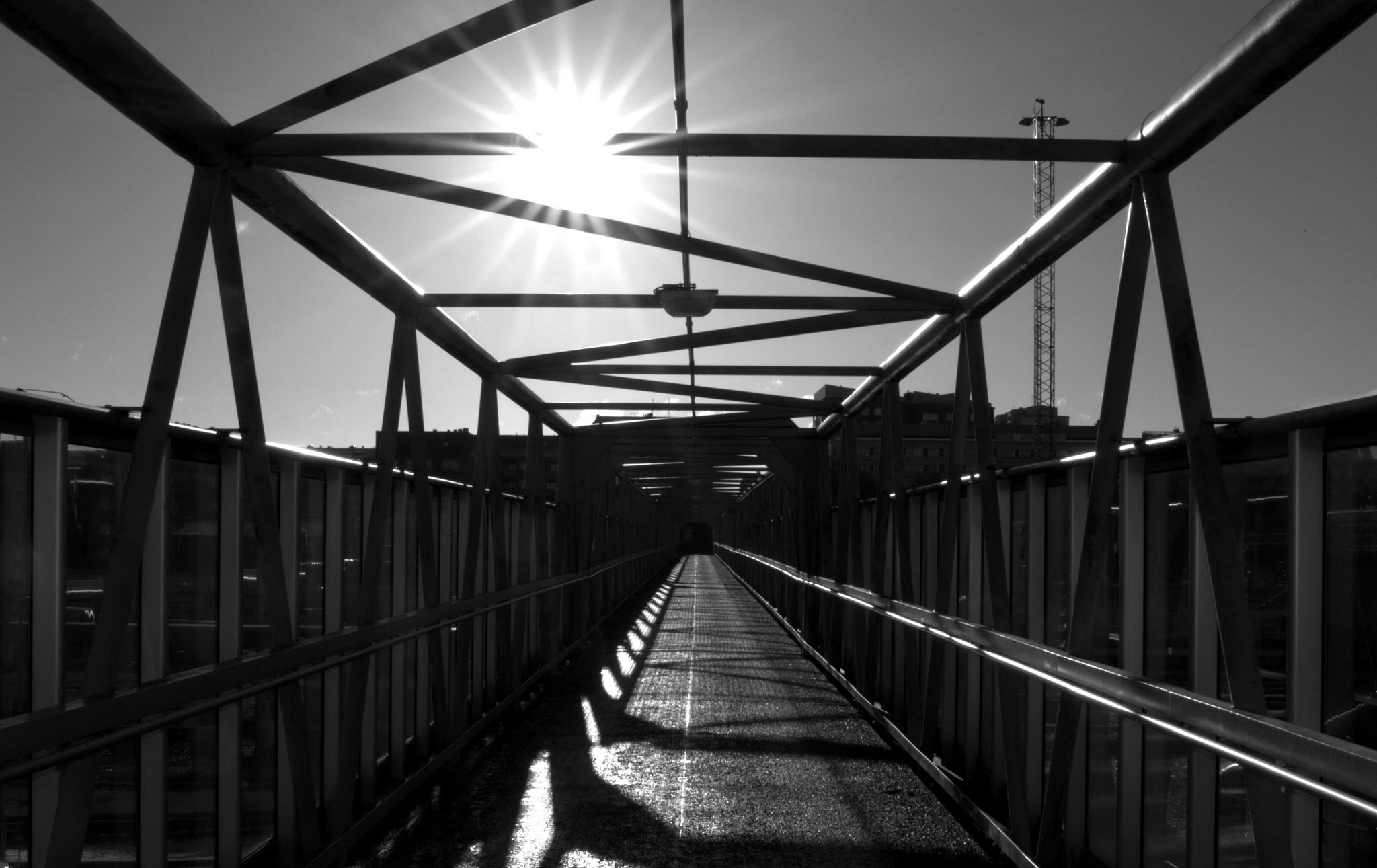 Sunny structure by Mkorho
