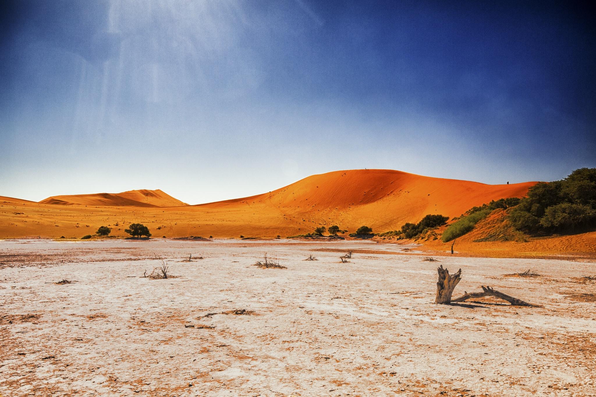 Desert by bob55
