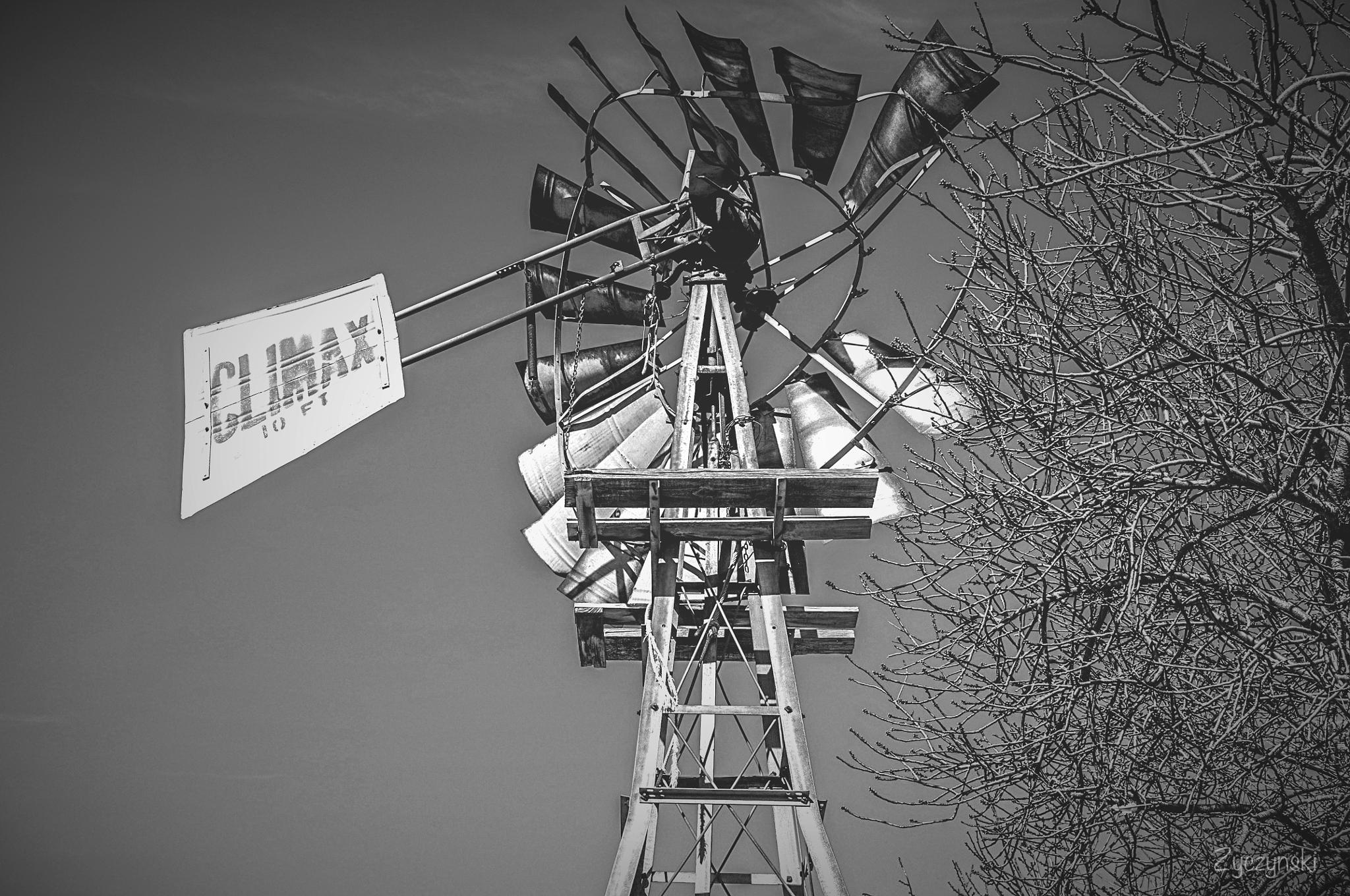 'Retired Water Wind Pump' by Nick Thomas