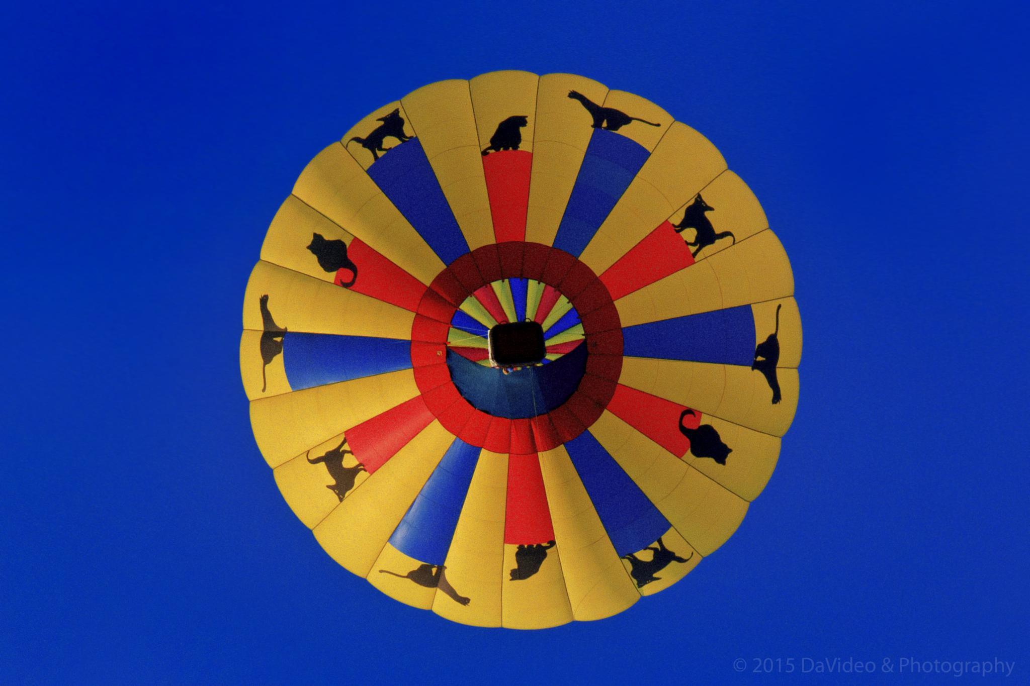 Below the Balloon by dave.skorupski